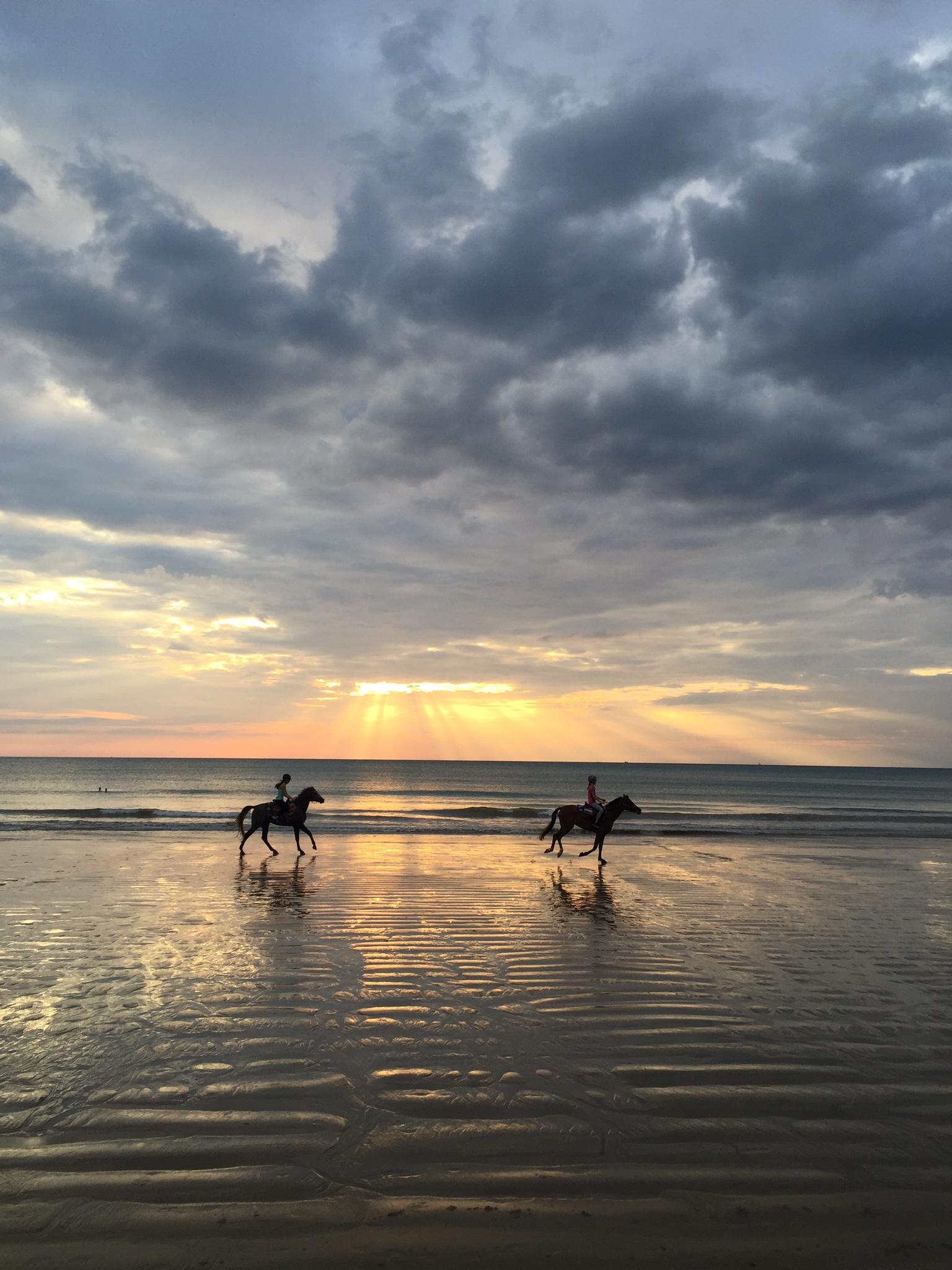 Promenade équestre au bord de l'océan