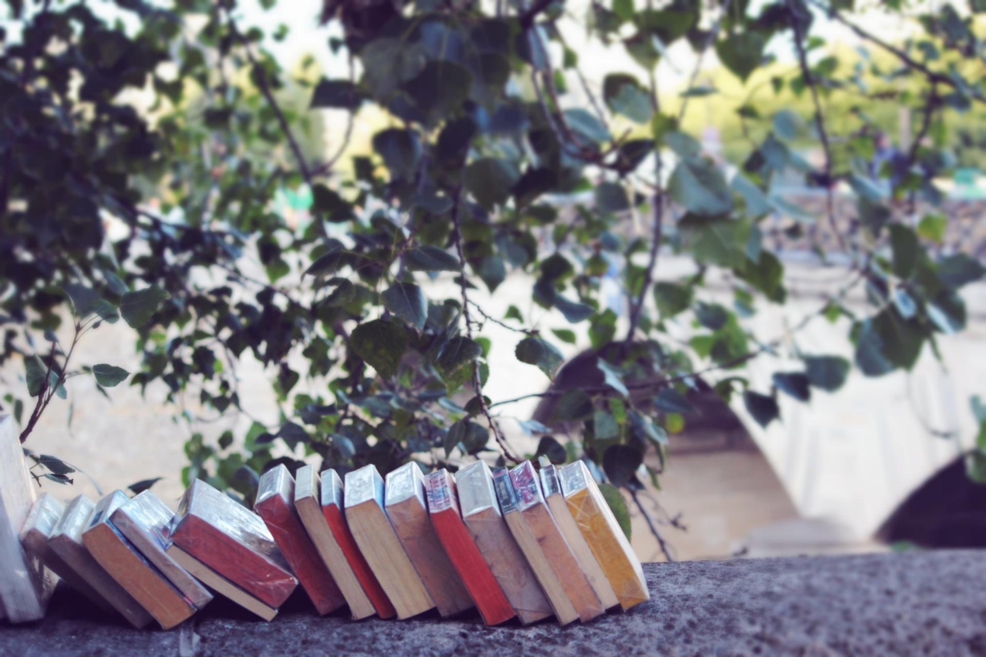 Books sur seine