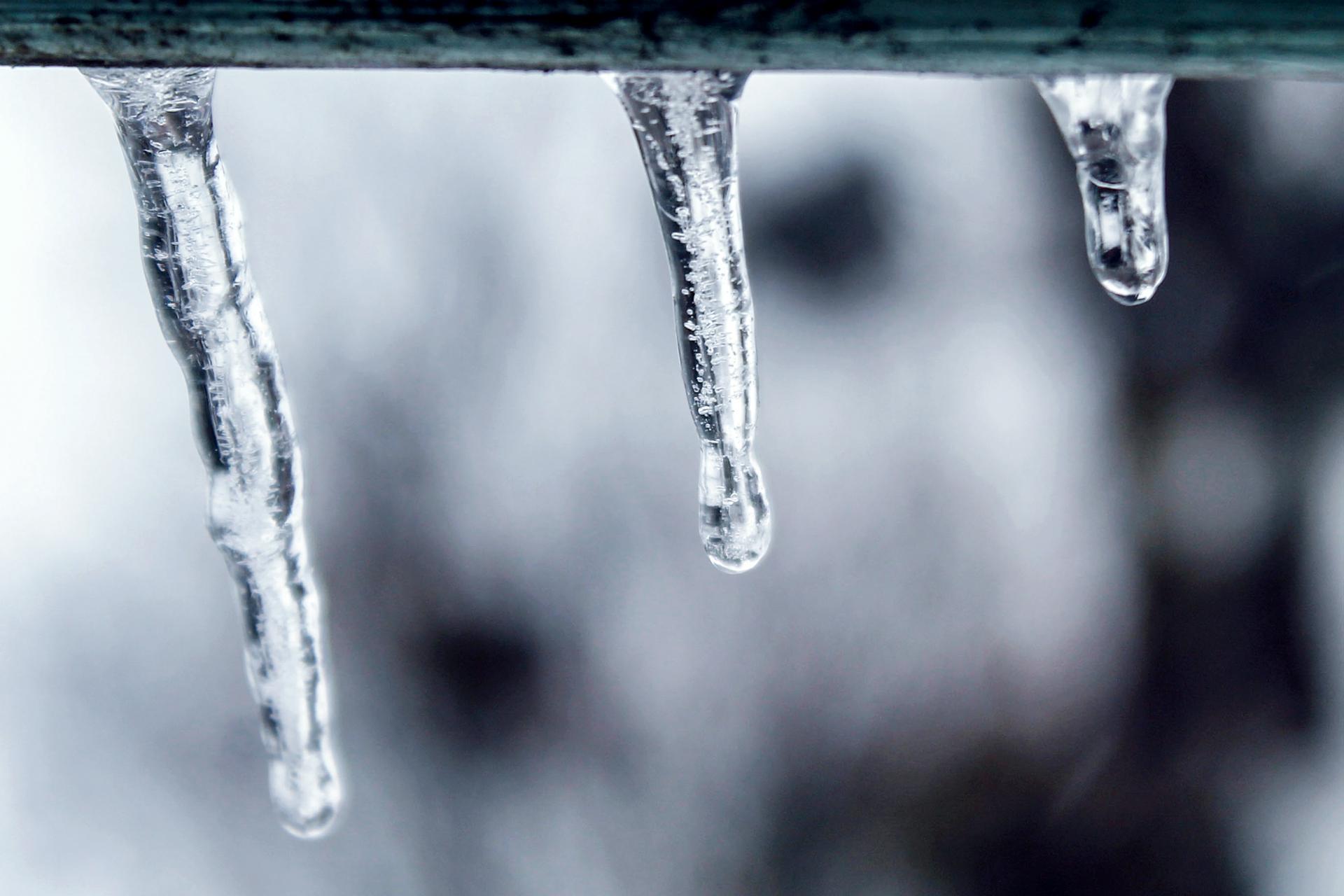 Grandes gelées