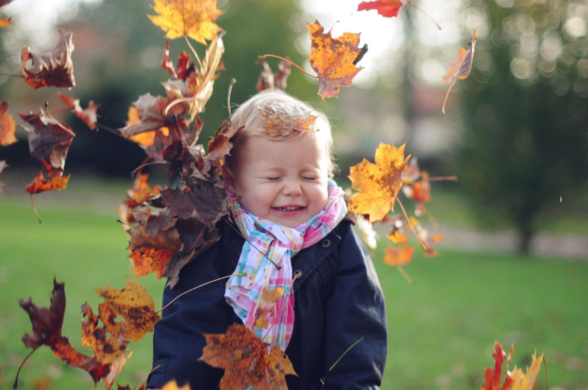 Clémentine sous les feuilles
