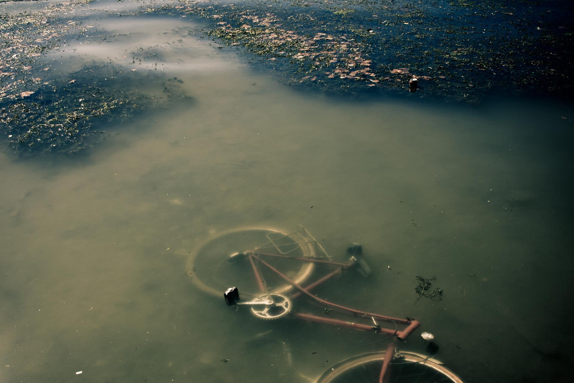 Pollution Aquatique