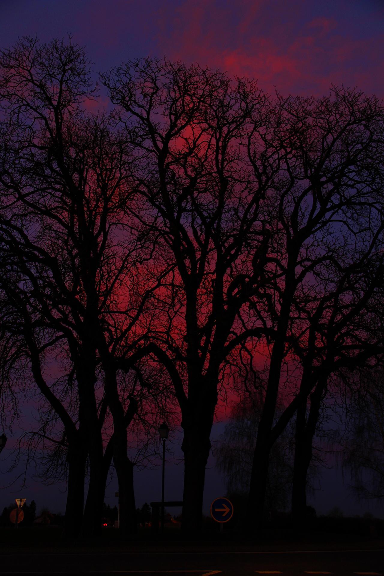 couleur d'un soir