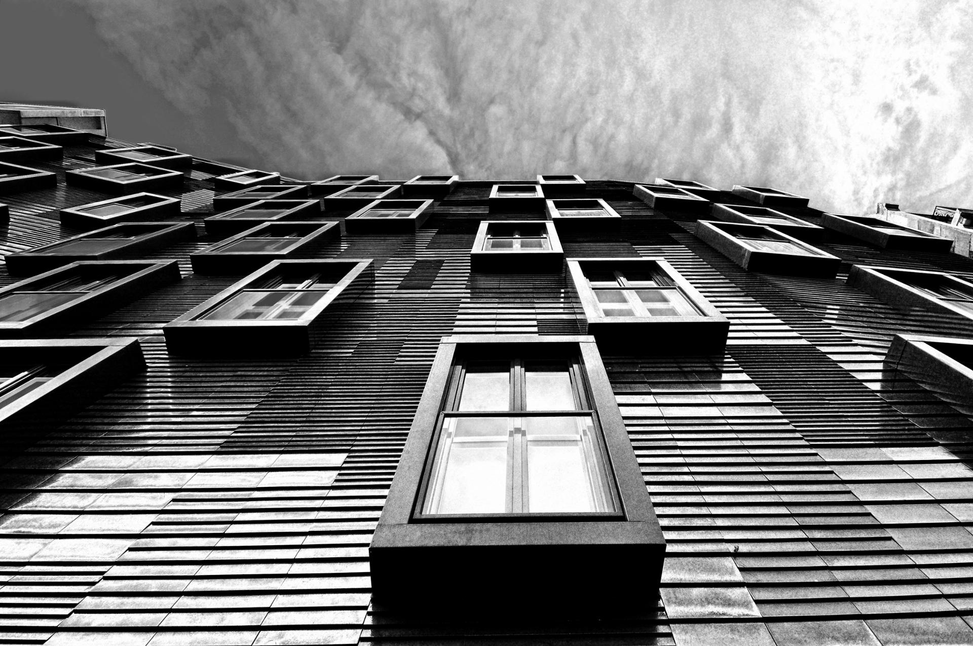 Windows...Paris