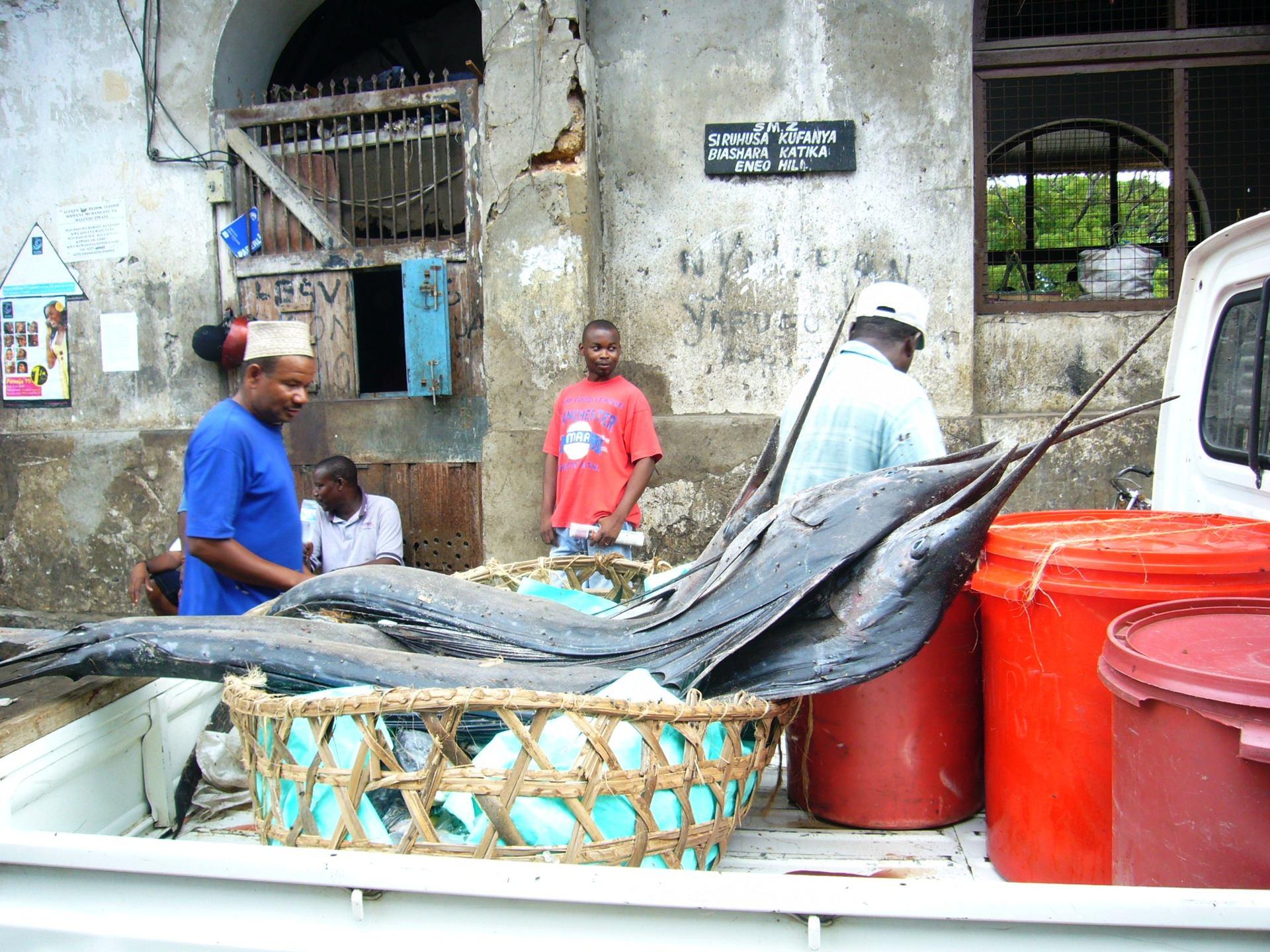 Livraison d'Espadons, marché de Zanzibar (Tanzanie)