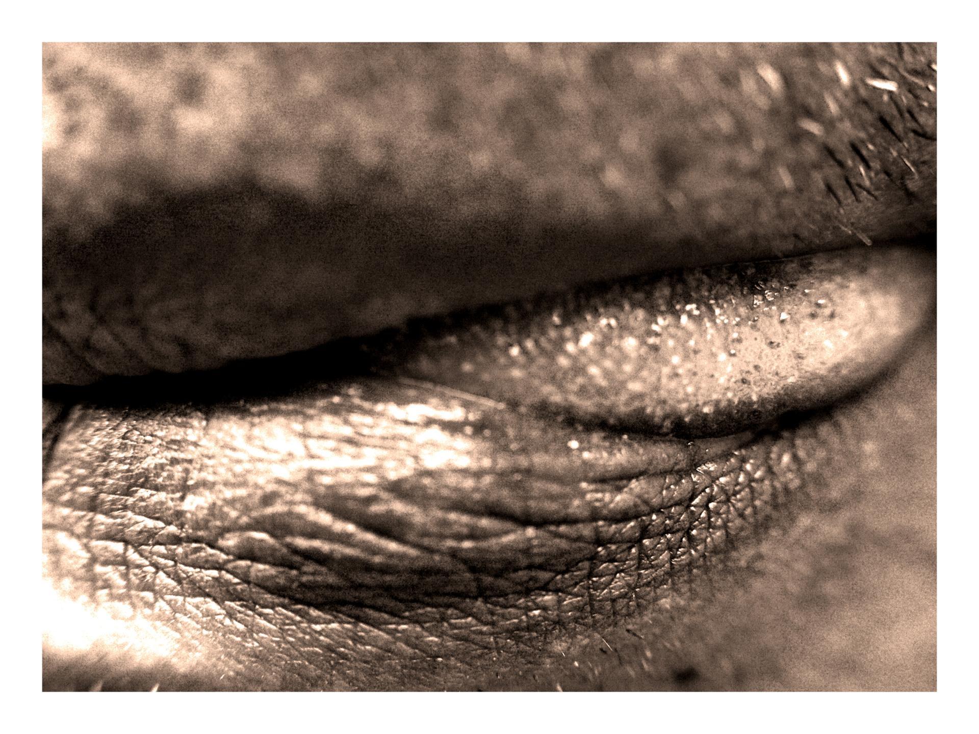 Lipsss