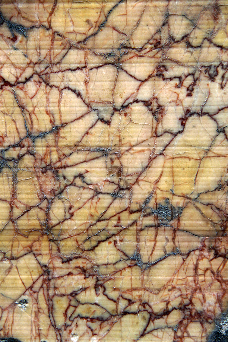 Veines du marbre