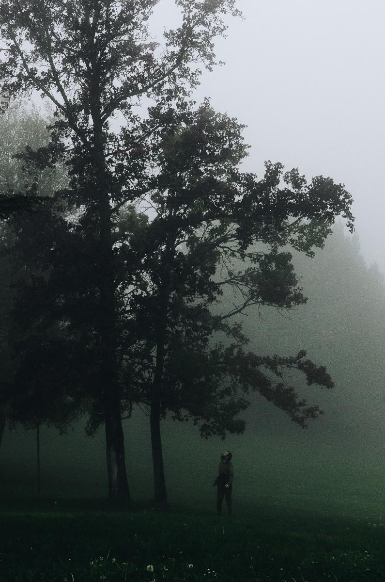 Stranger Mists