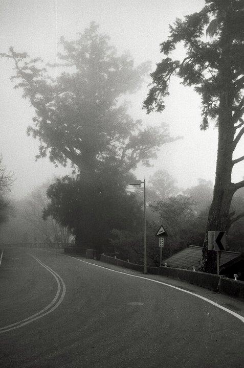 Foggy taiwan