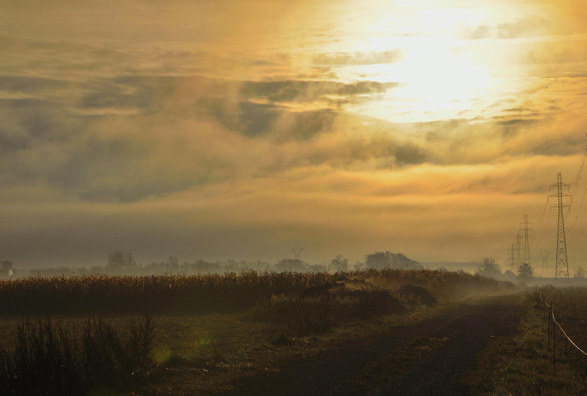 La brume du matin