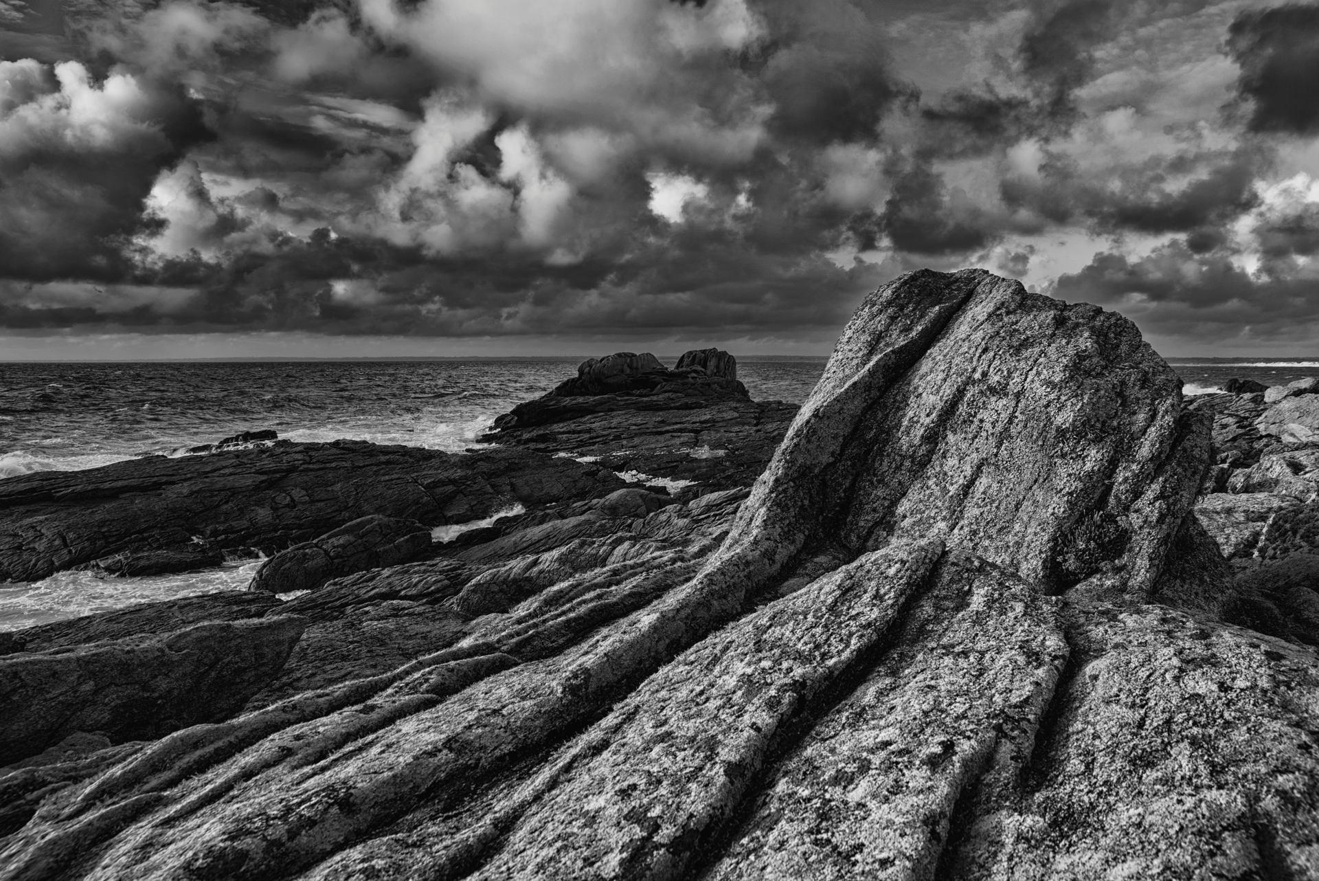 les racines d'un rocher