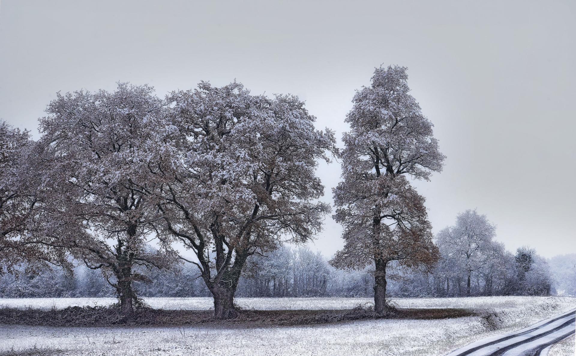1,2,3 neige