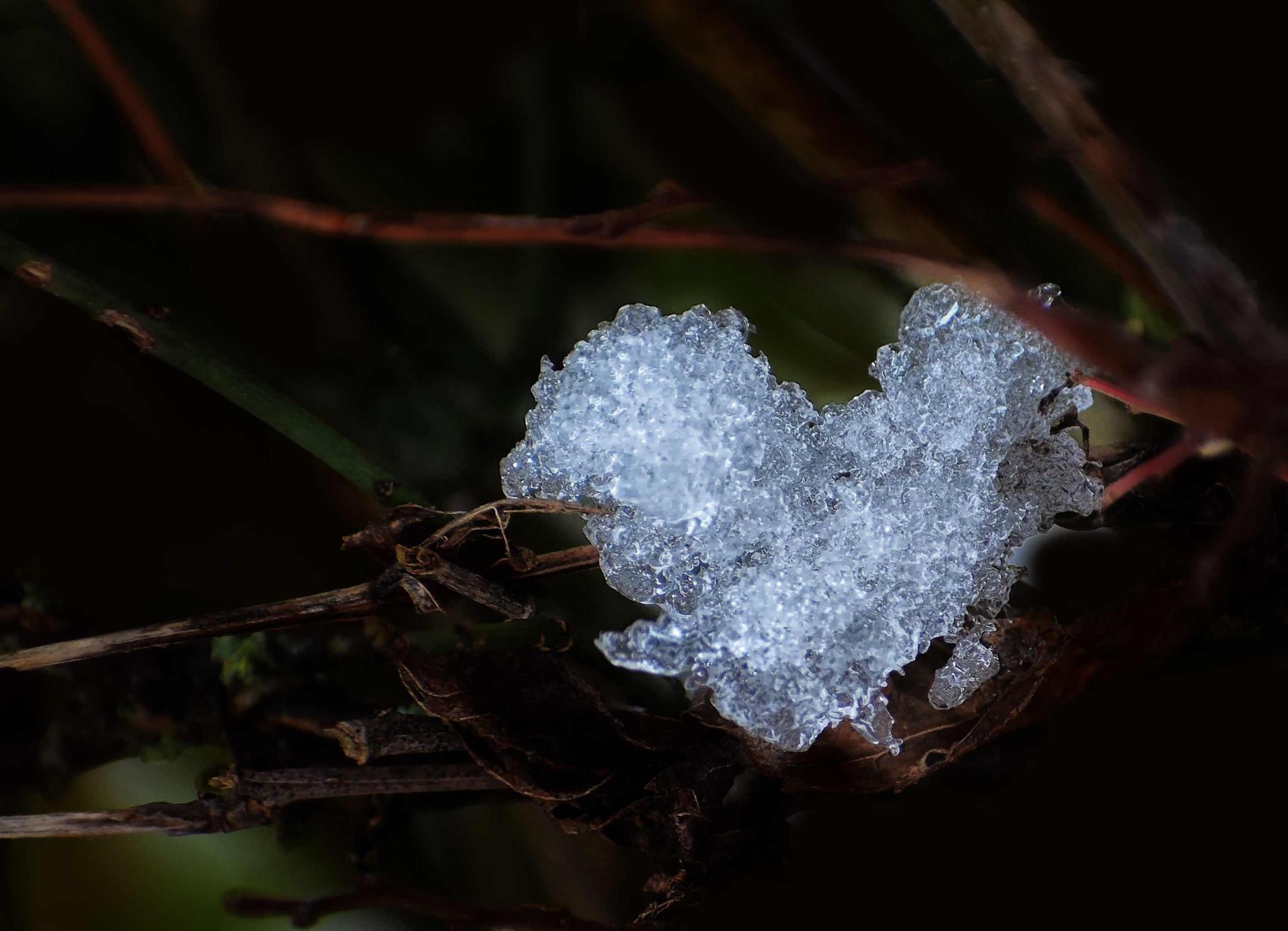 coeur de glace naturel