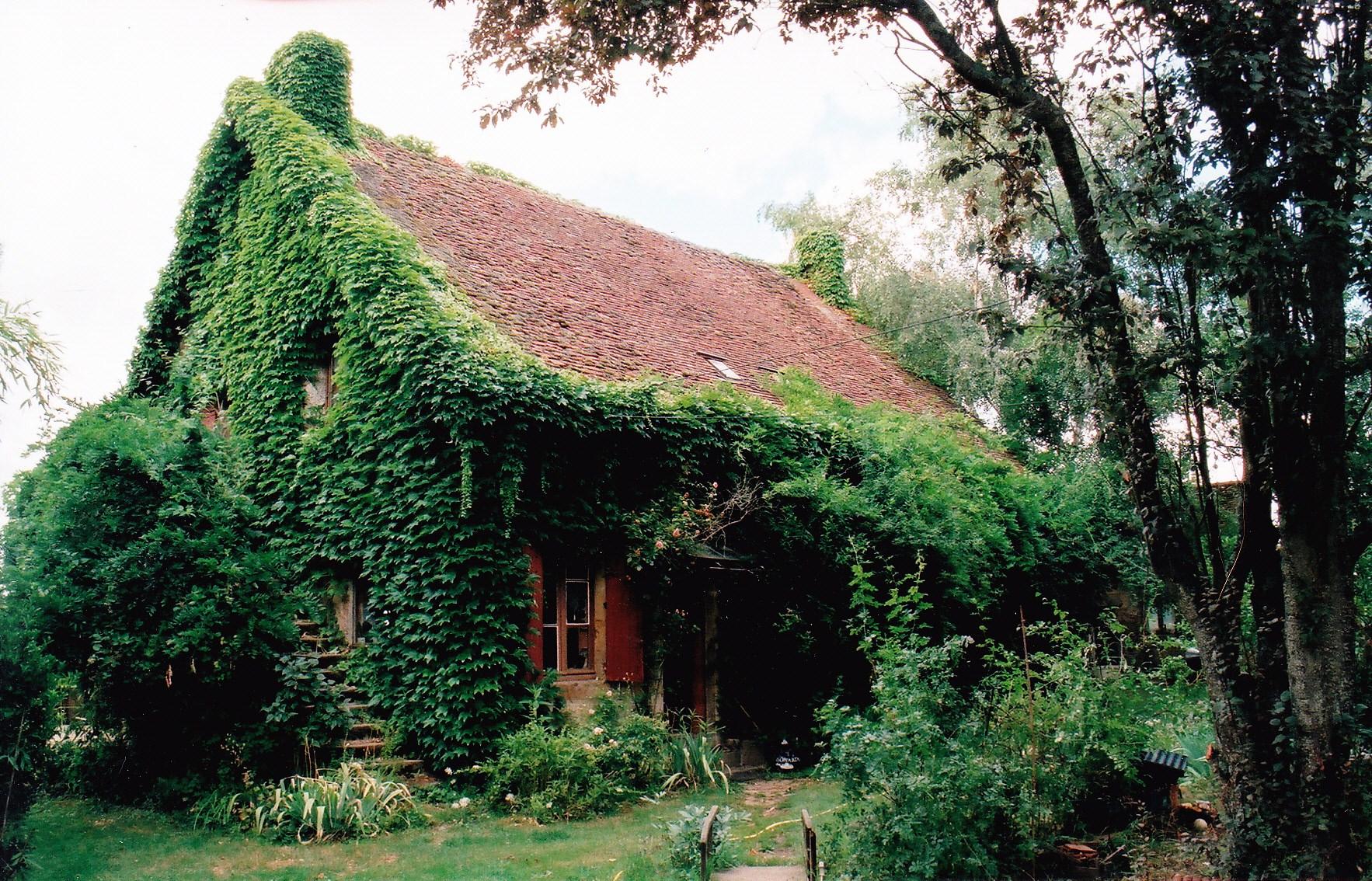 maison vert