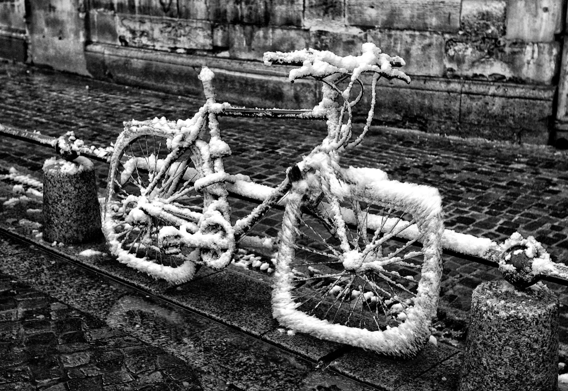 Mon beau vélo.