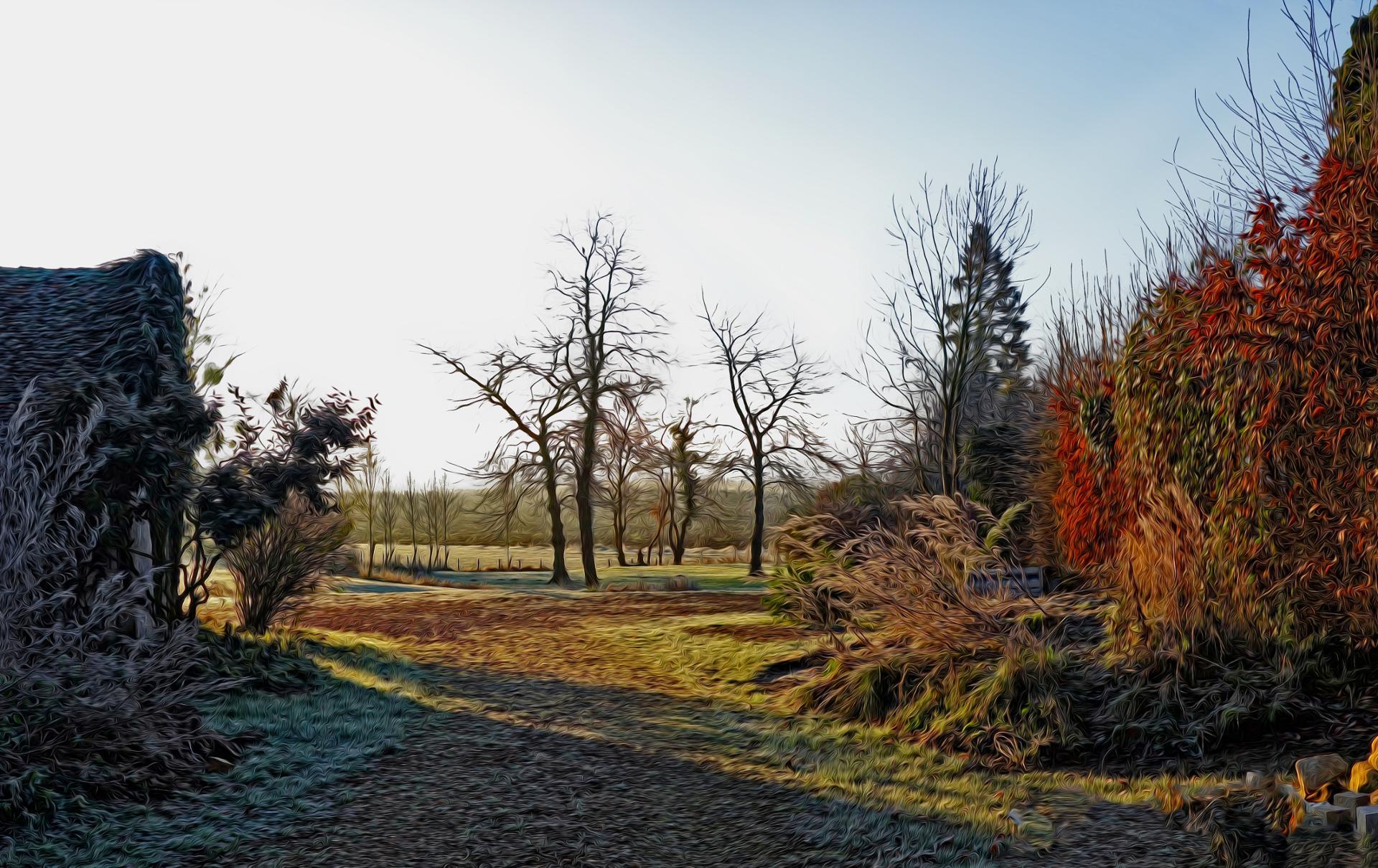 Par un beau matin d' hiver