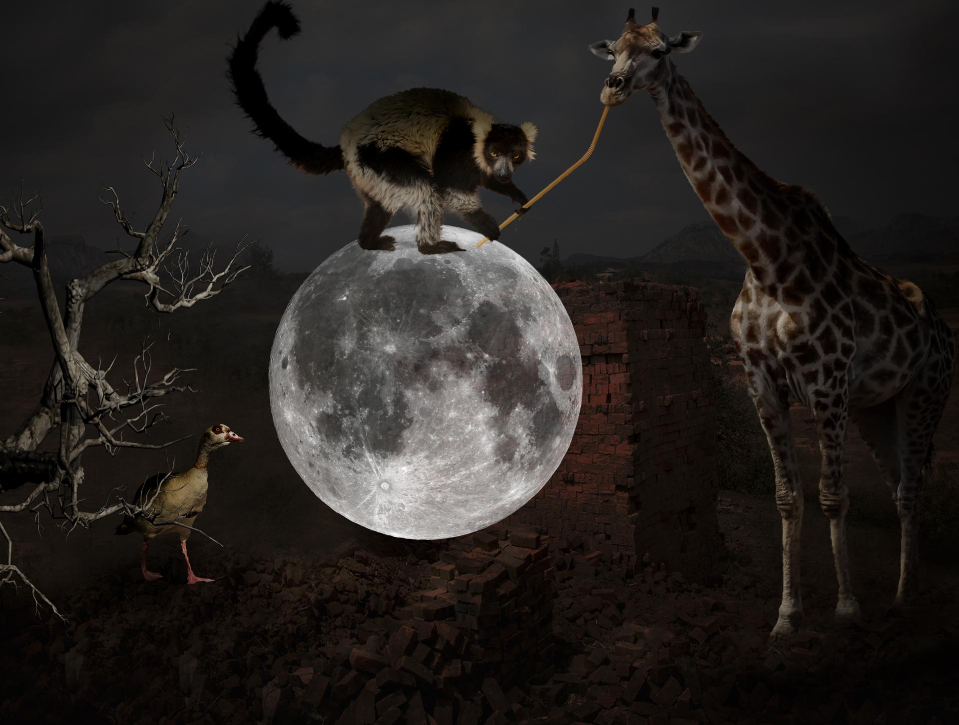 Gentes de la Lune.