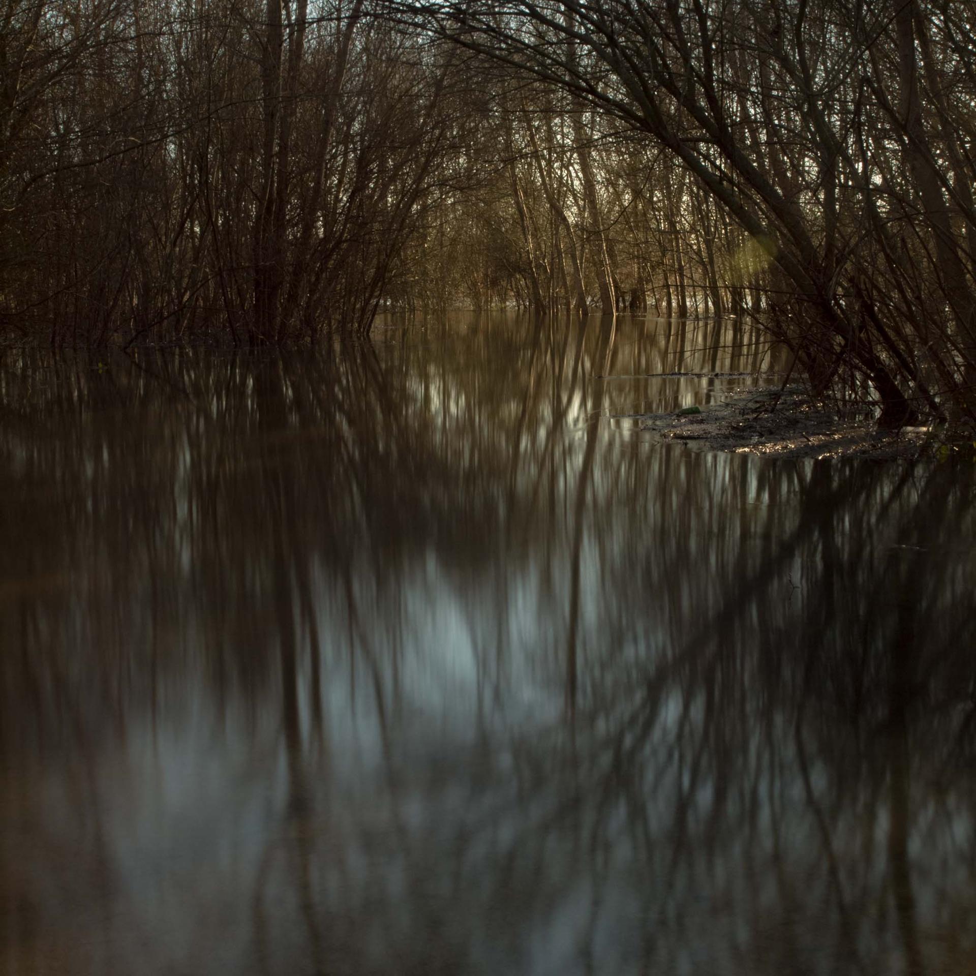 Photo d'un chemin de bord d'eau qui se prenait pour une rivière..