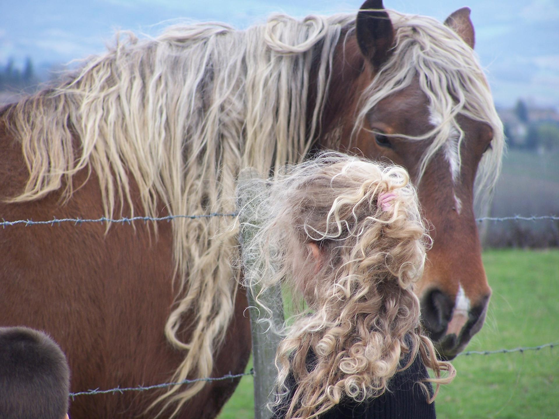 cheveux au vent