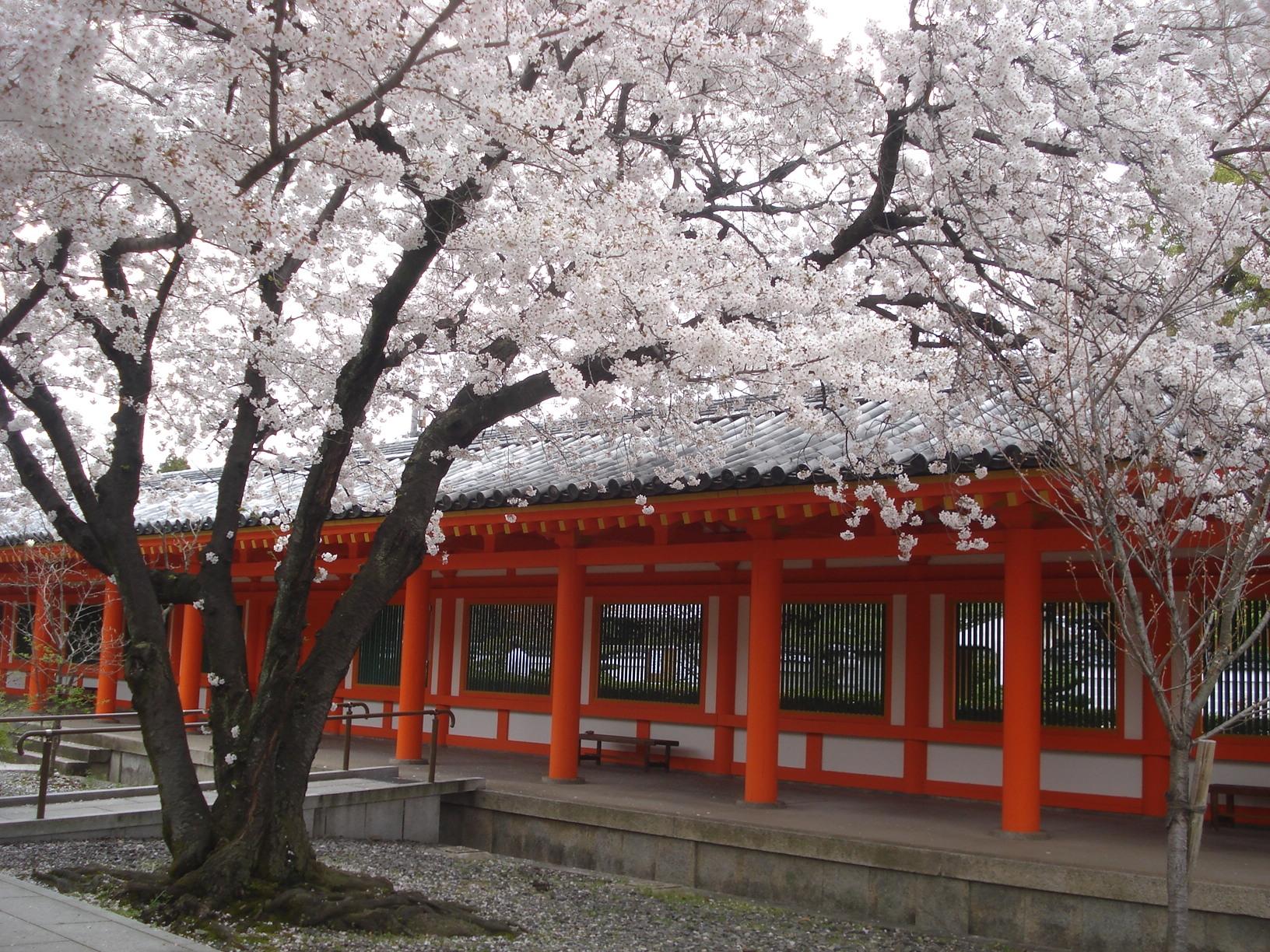Dans le temple de Sanjusangendo, à Kyoto