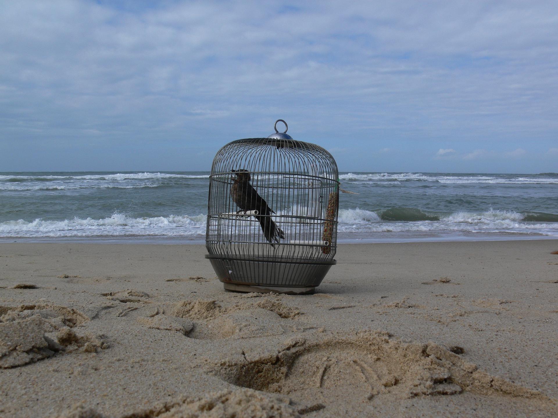 Georgette à la plage