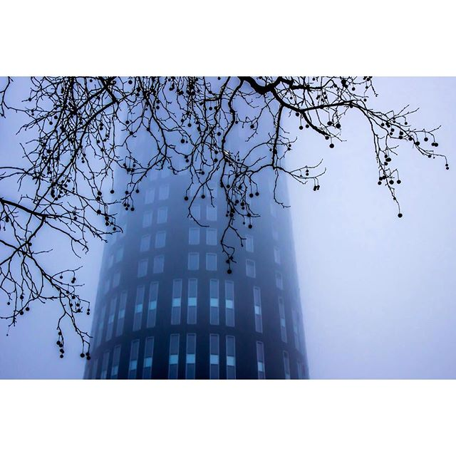 instagram photo