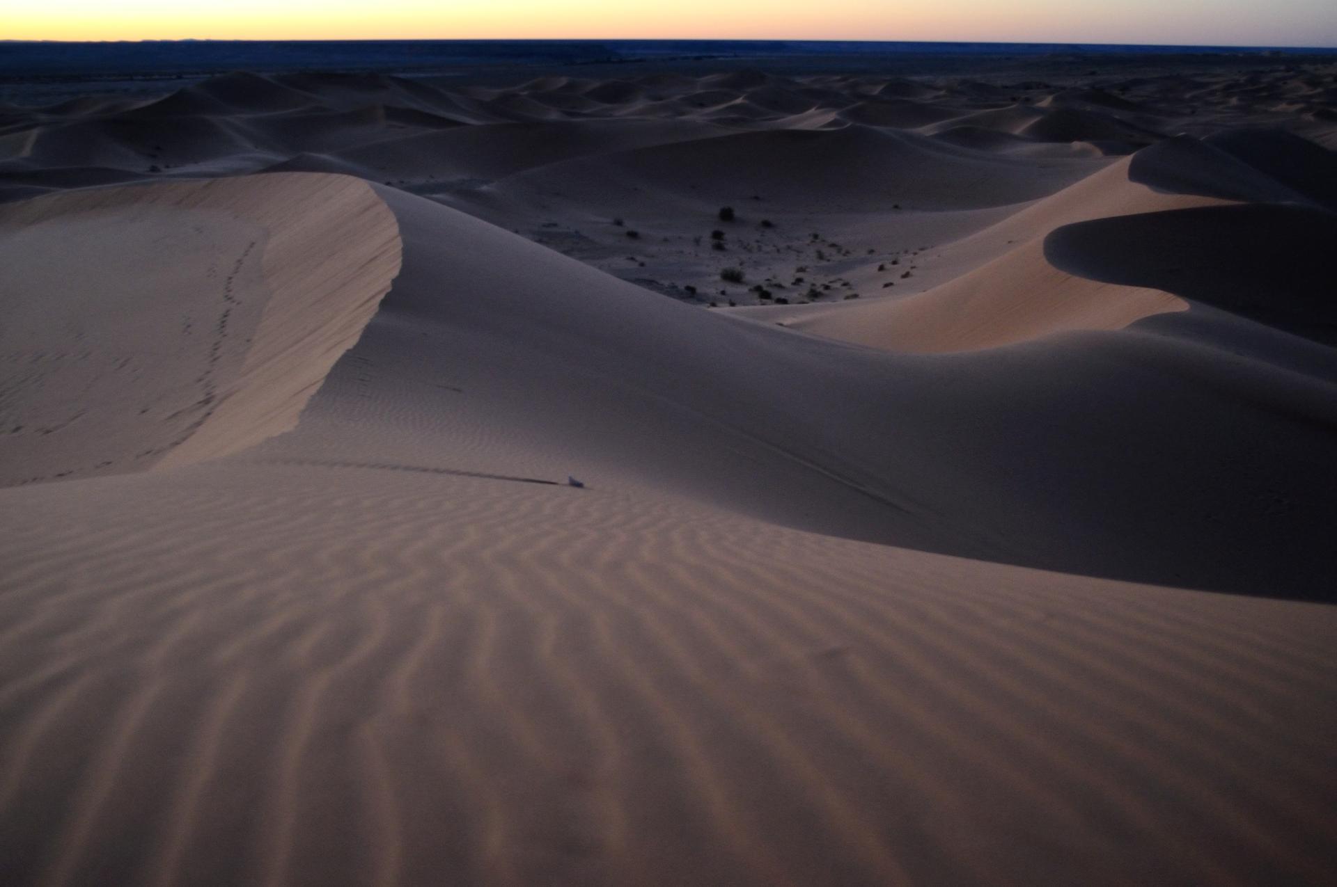 Un soir, des dunes