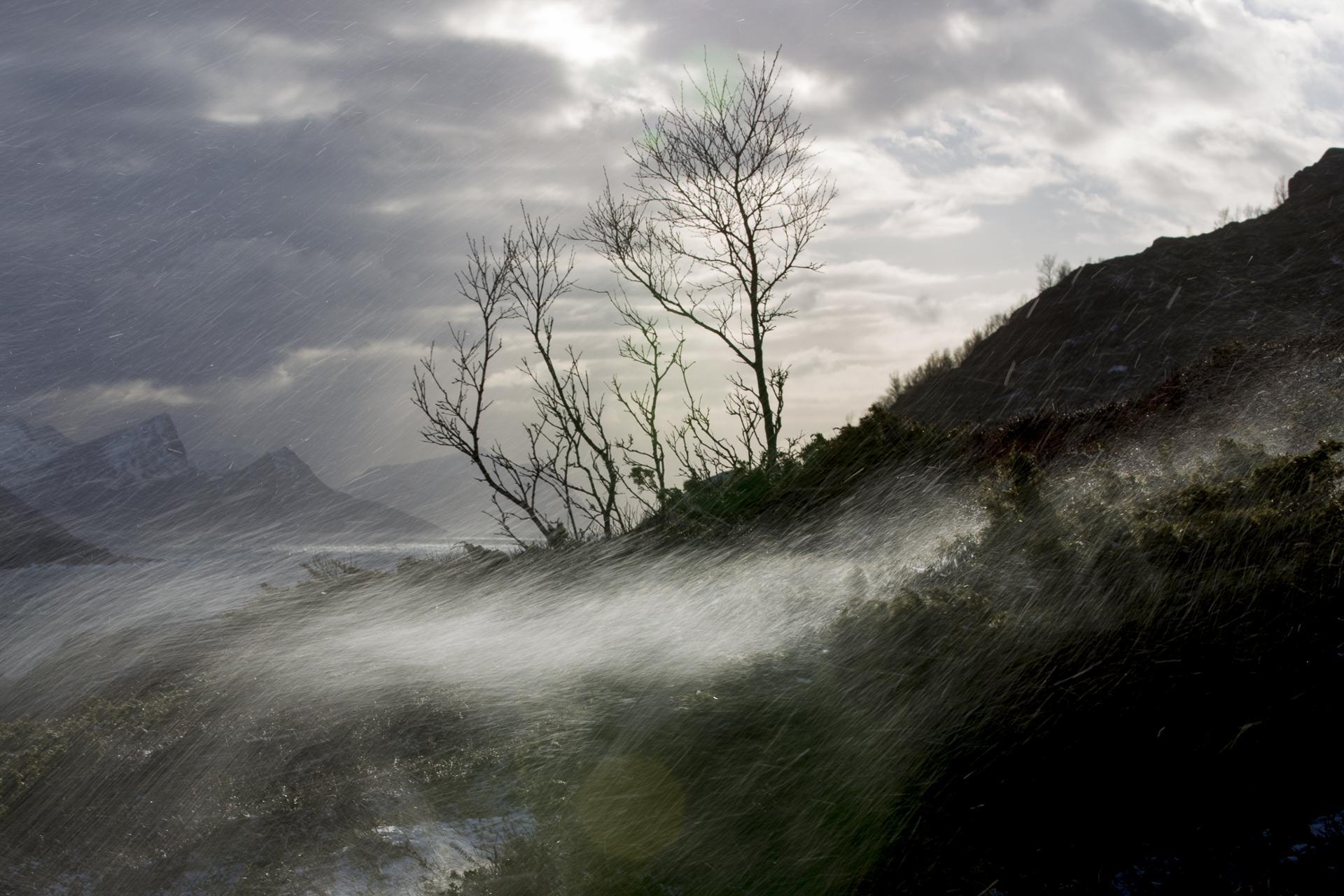 tempête aux lofoten