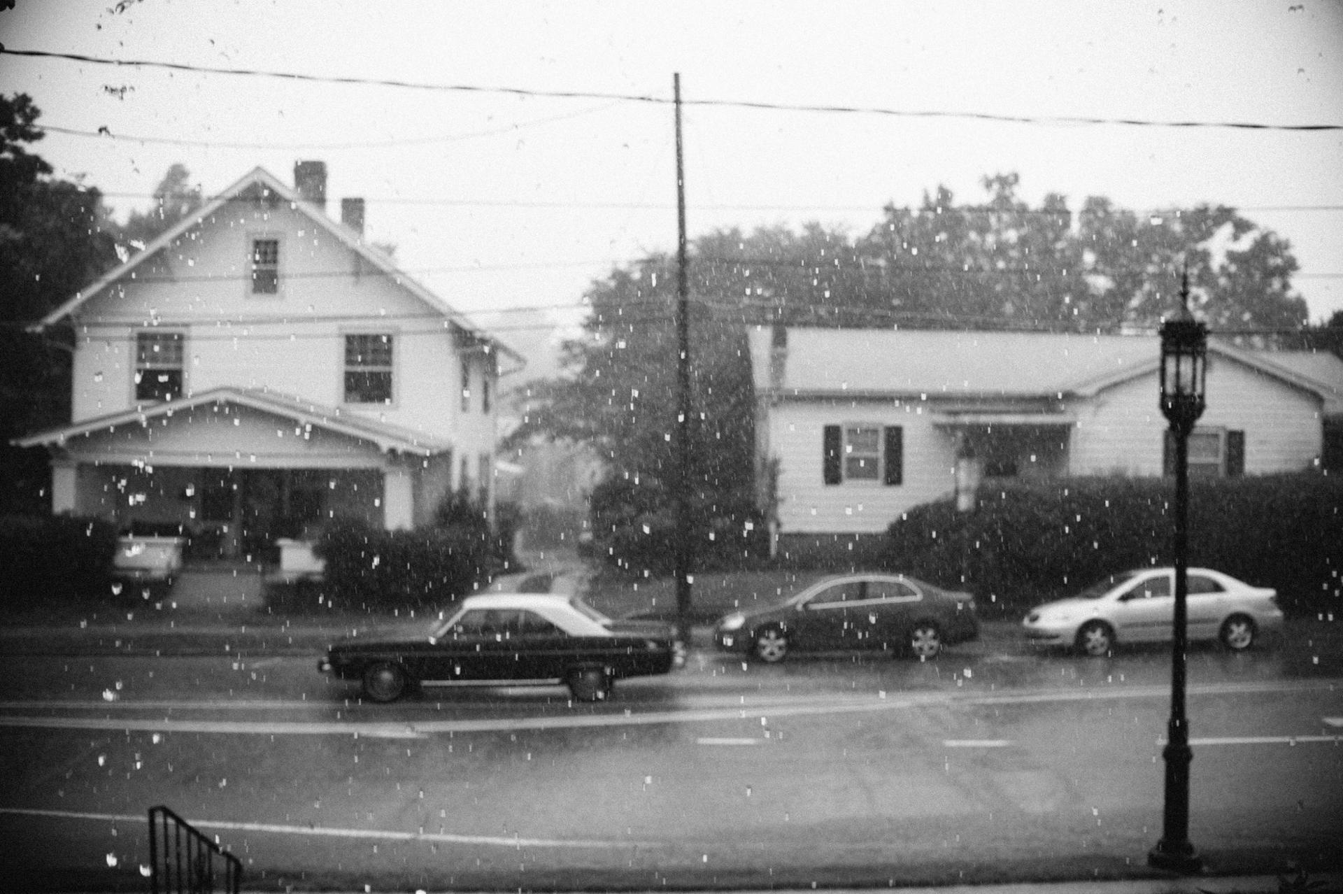 Raining cat & dog