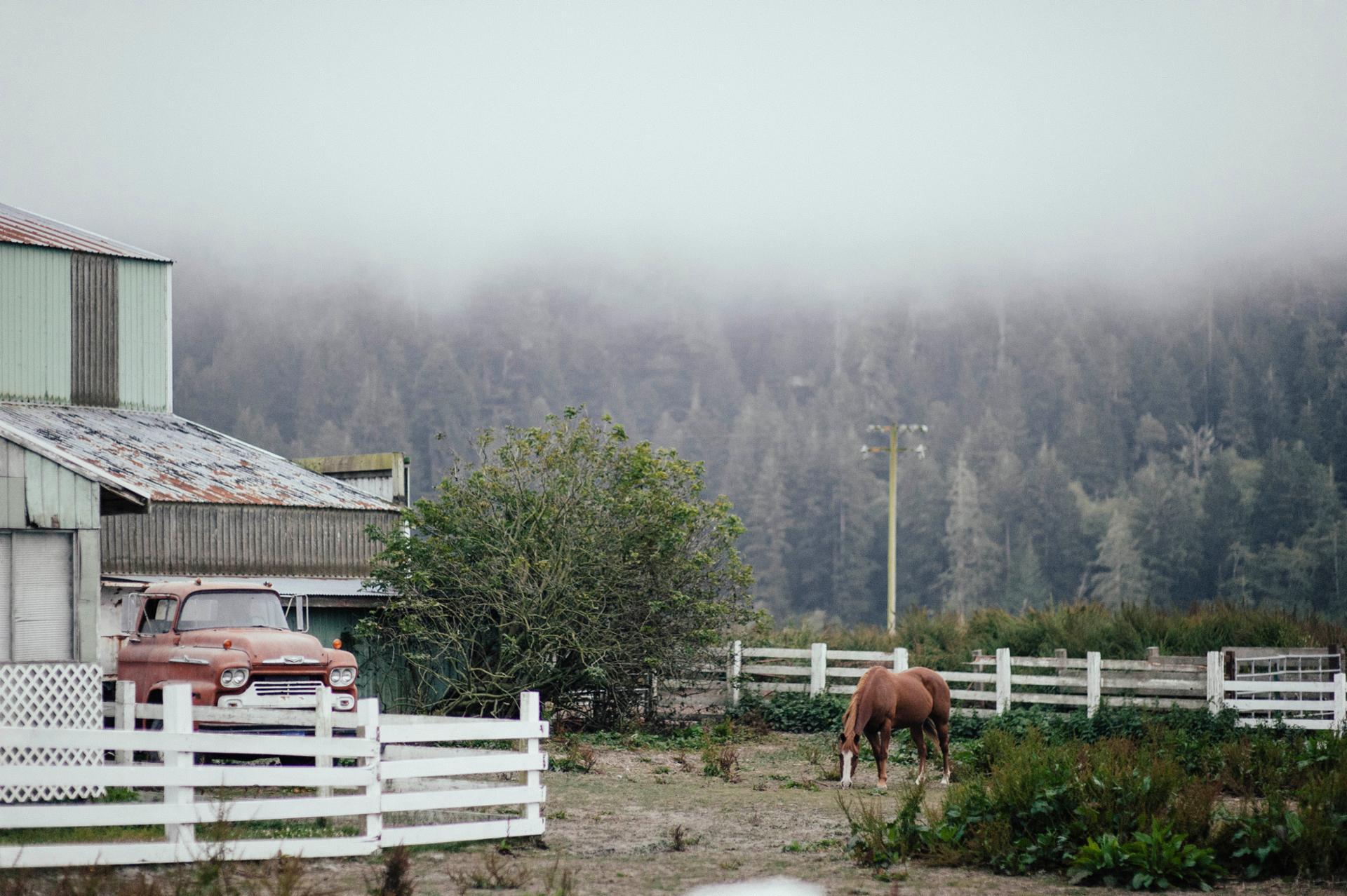 Farm on 101 N