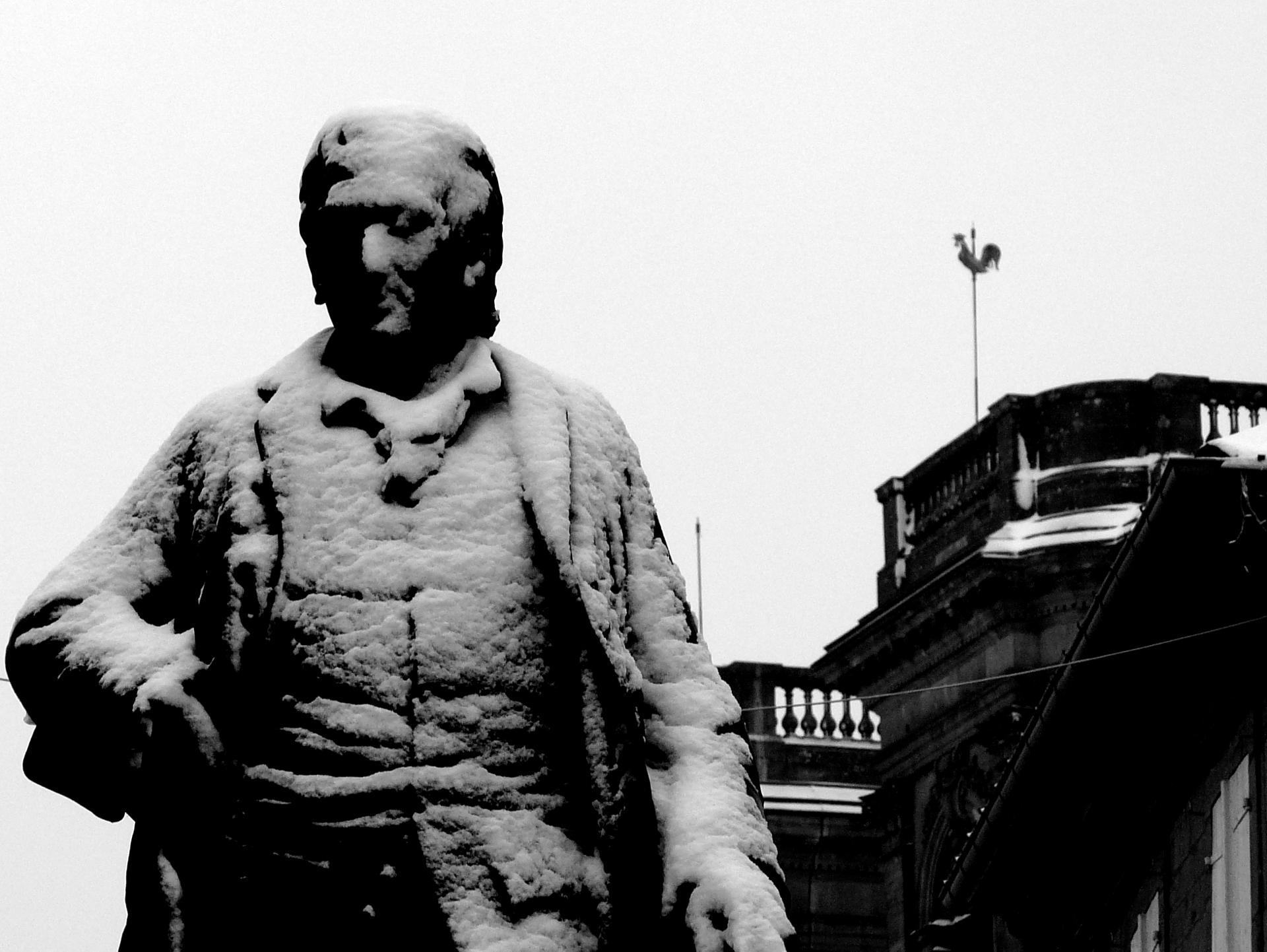 Le philosophe et le coq