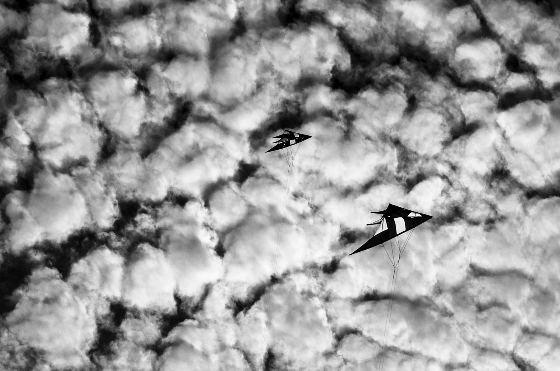 deux cerf-volant