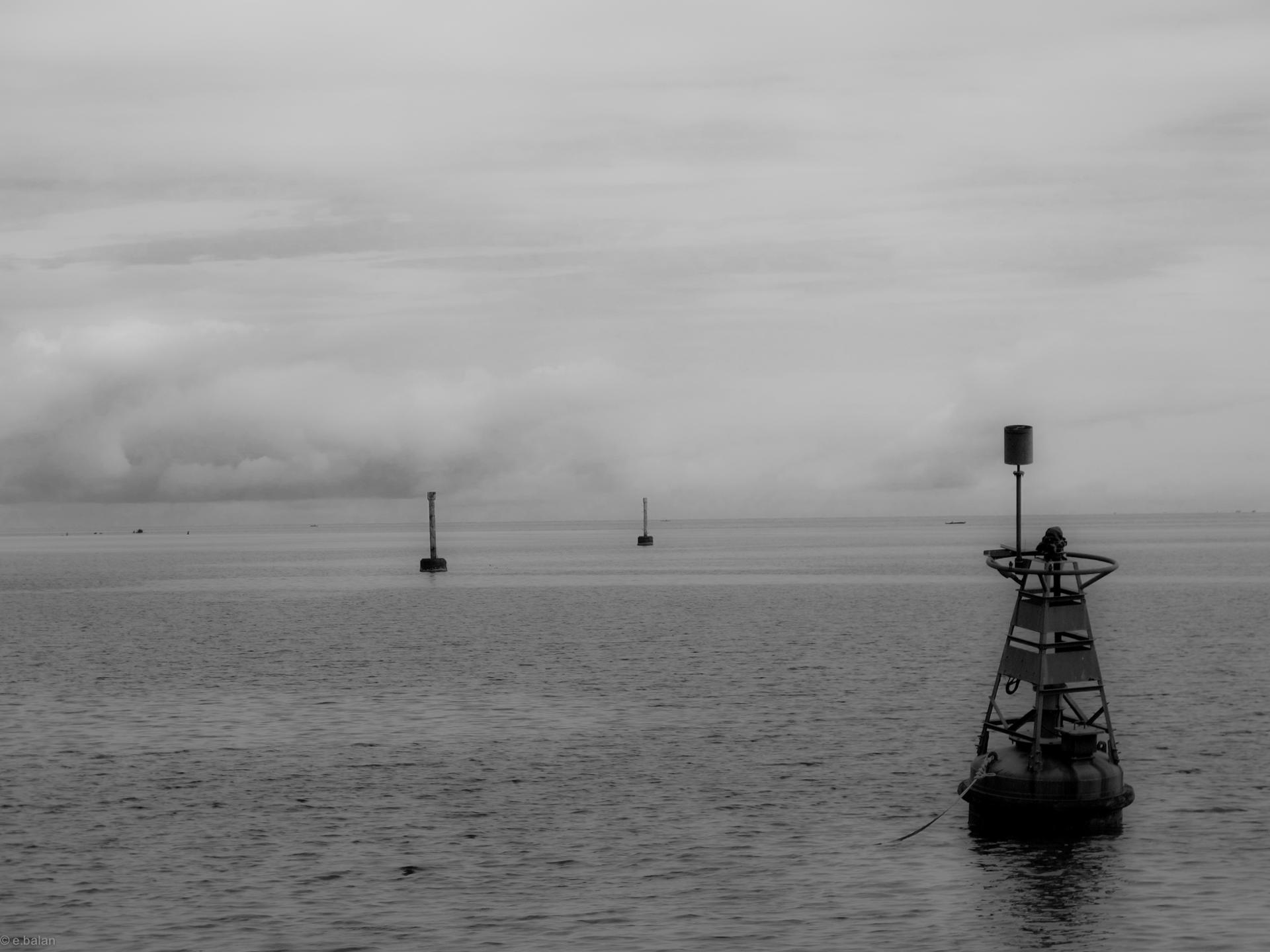 Perspective marine
