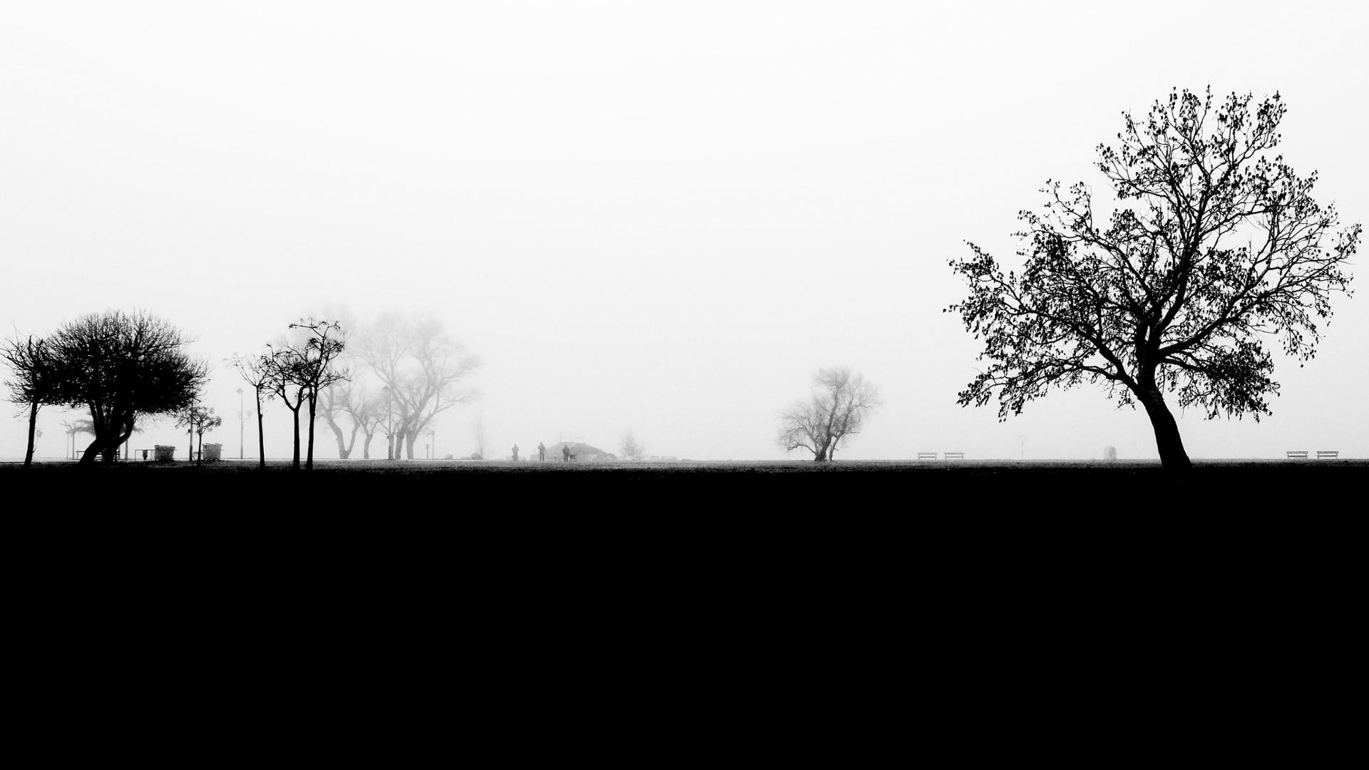 Brouillard noir