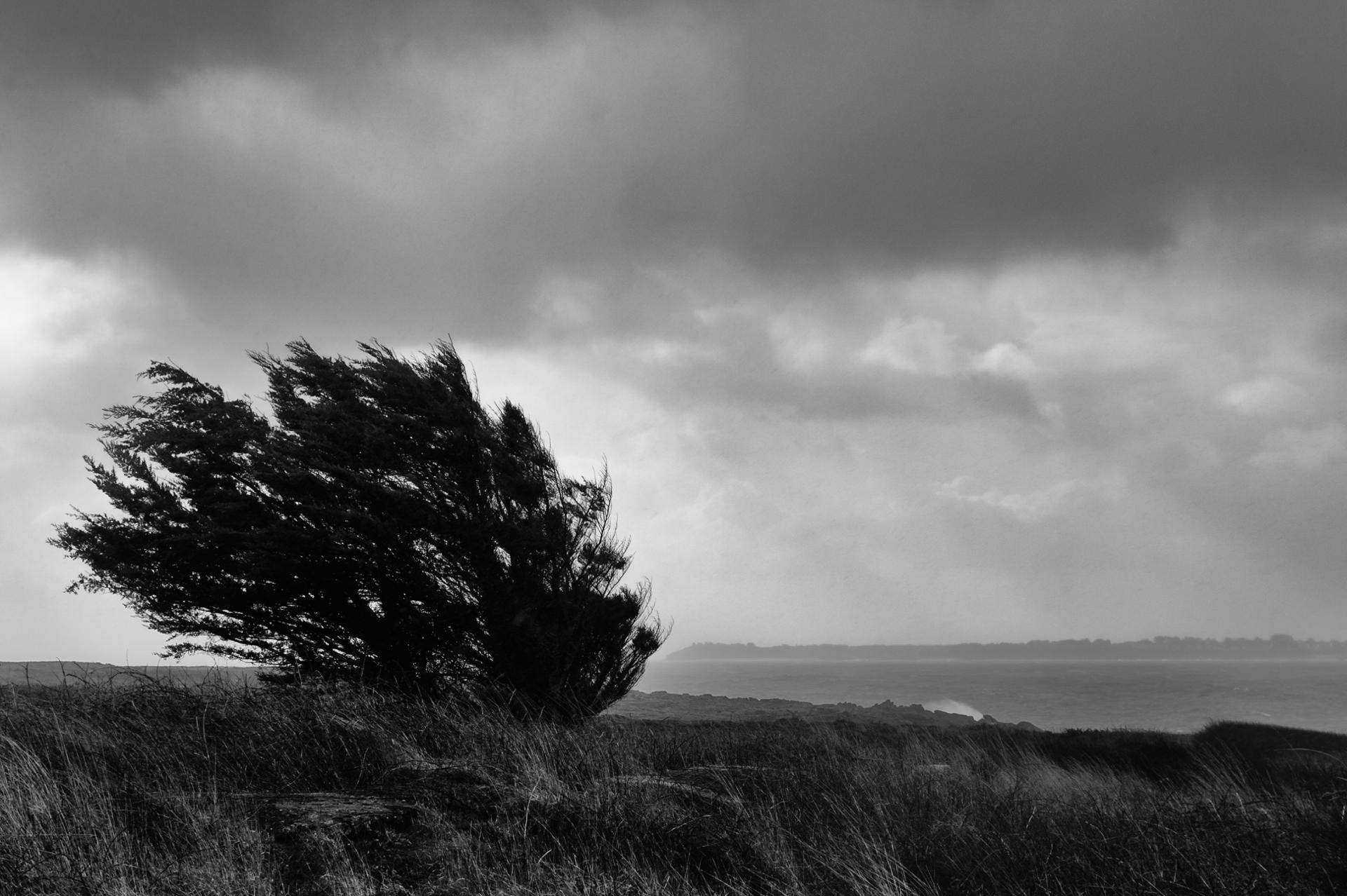 Bretagne sous le vent
