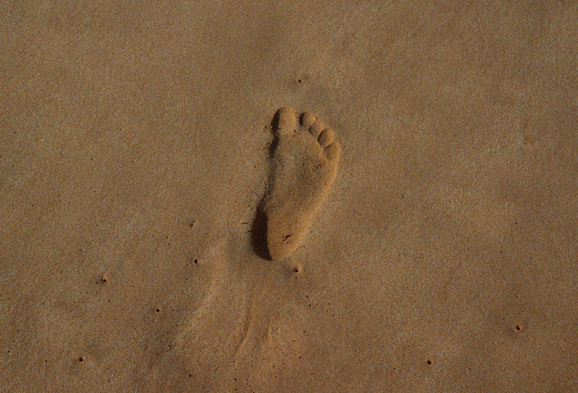 Empreinte d'hominidé