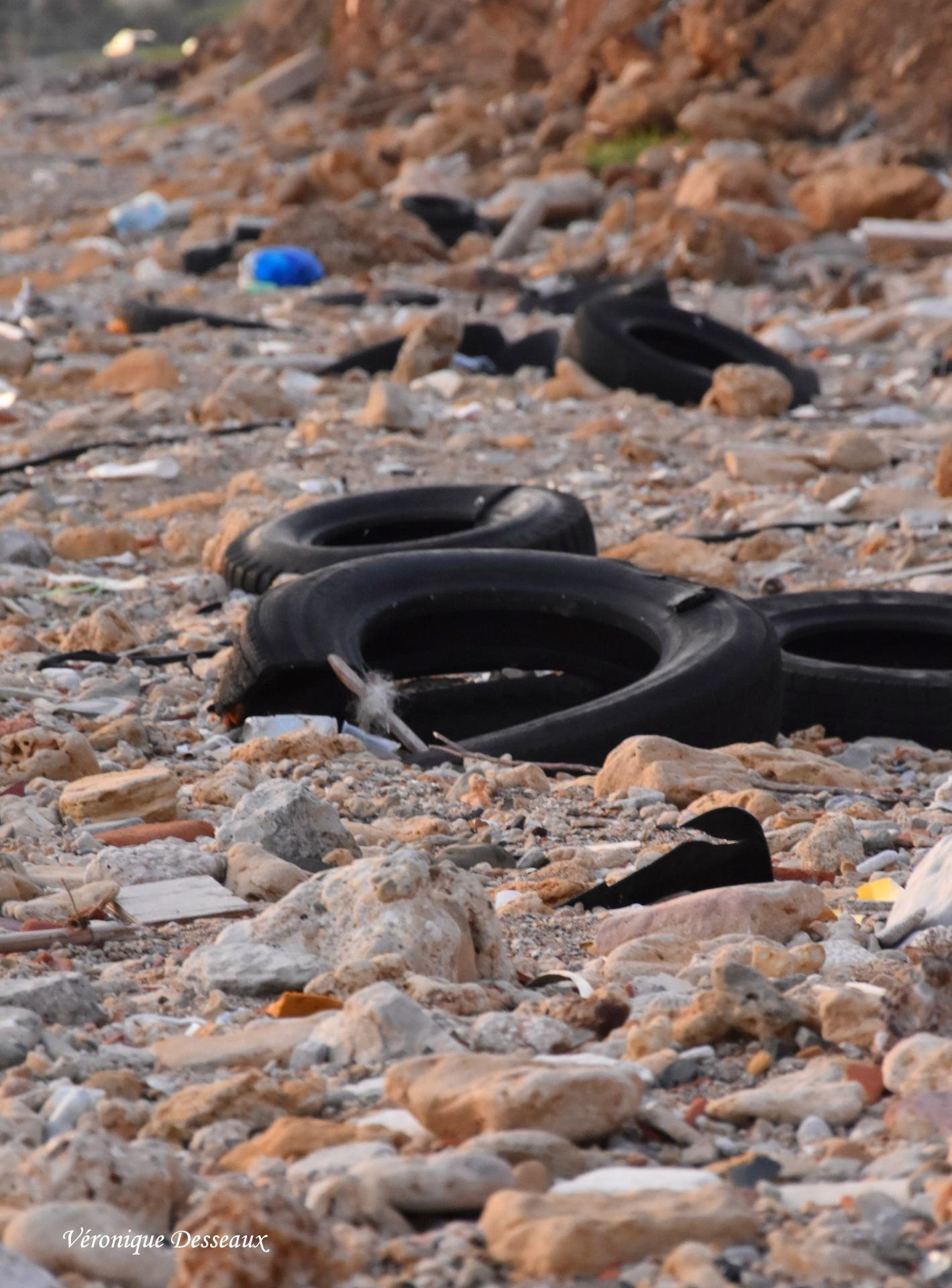 Des pneus sur la plage !
