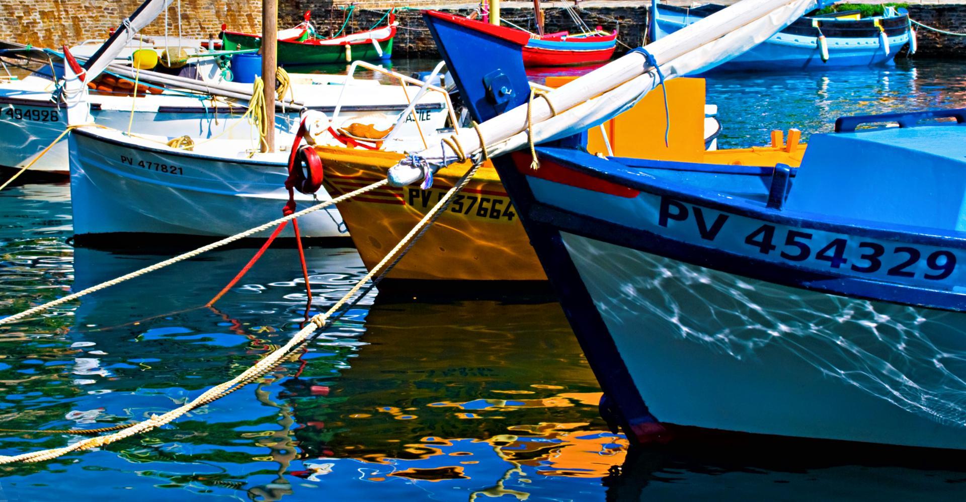 Les barques de Collioure (66)