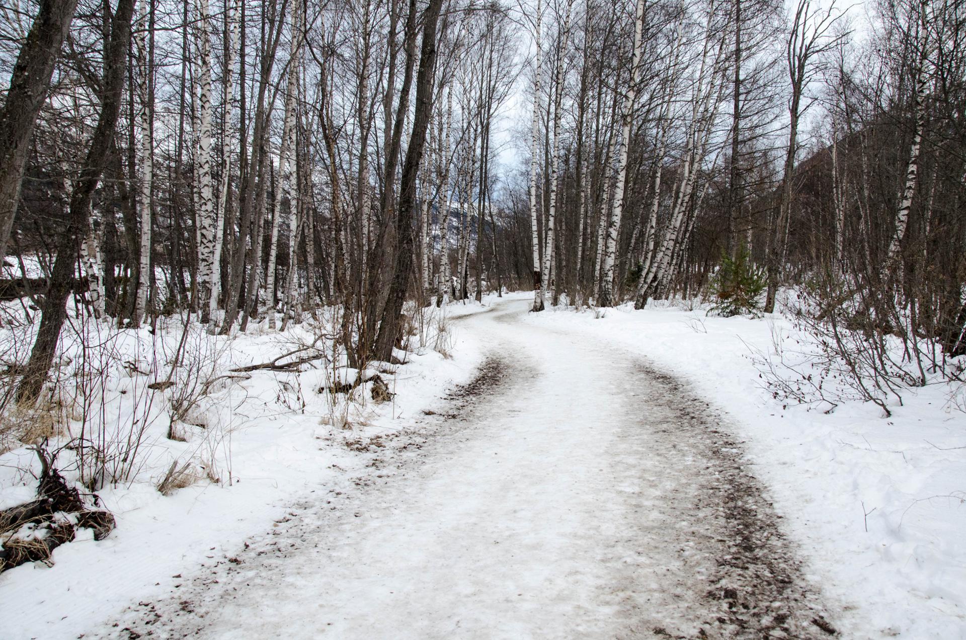 Route d'hiver