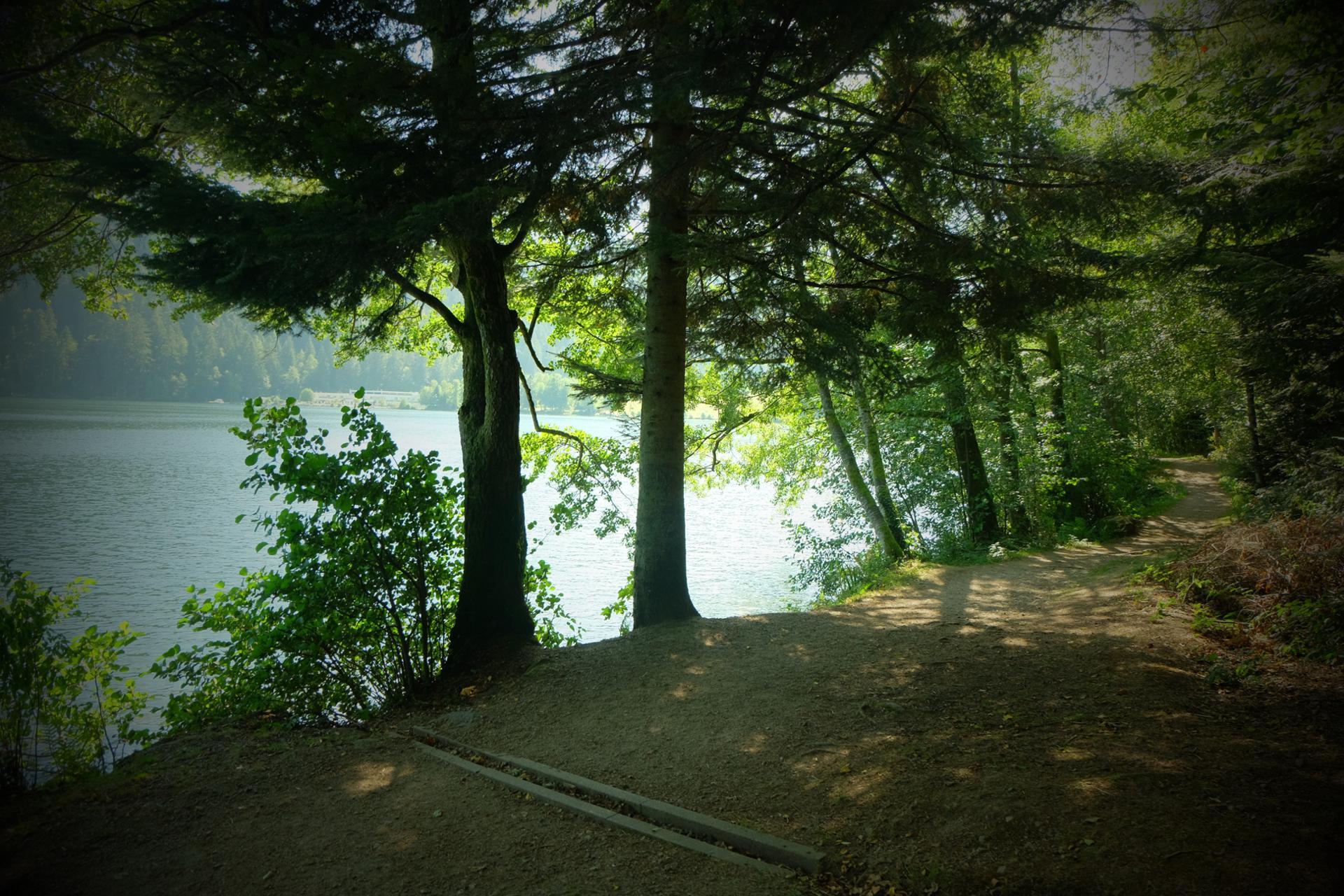 Belle lumière sur le lac de Gérardmer.
