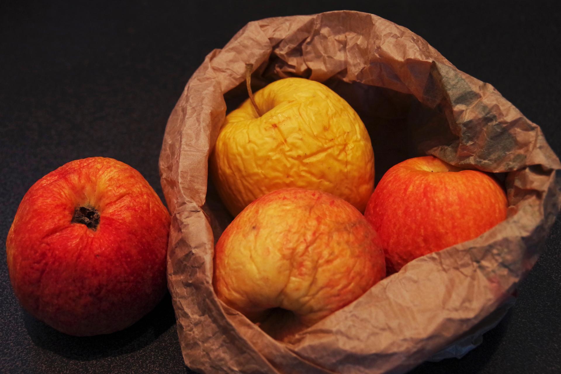 _IMG0218a.jpg - Les pommes oubliées