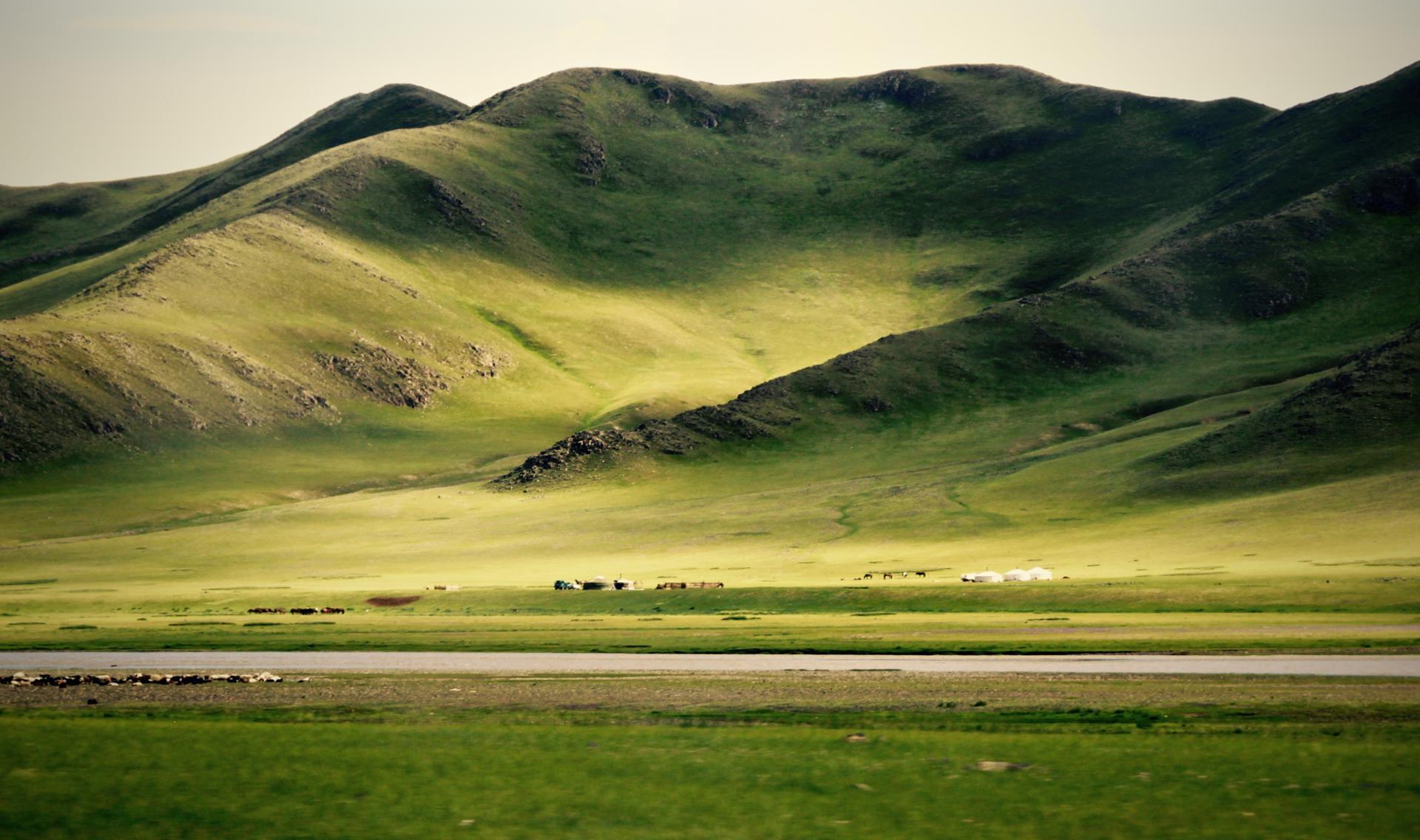 La beauté de la steppe