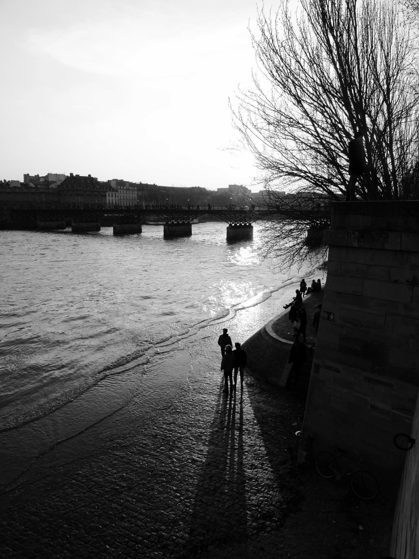 Crue sur les berges de la Seine près du Pont des Arts, Paris Mars 2016