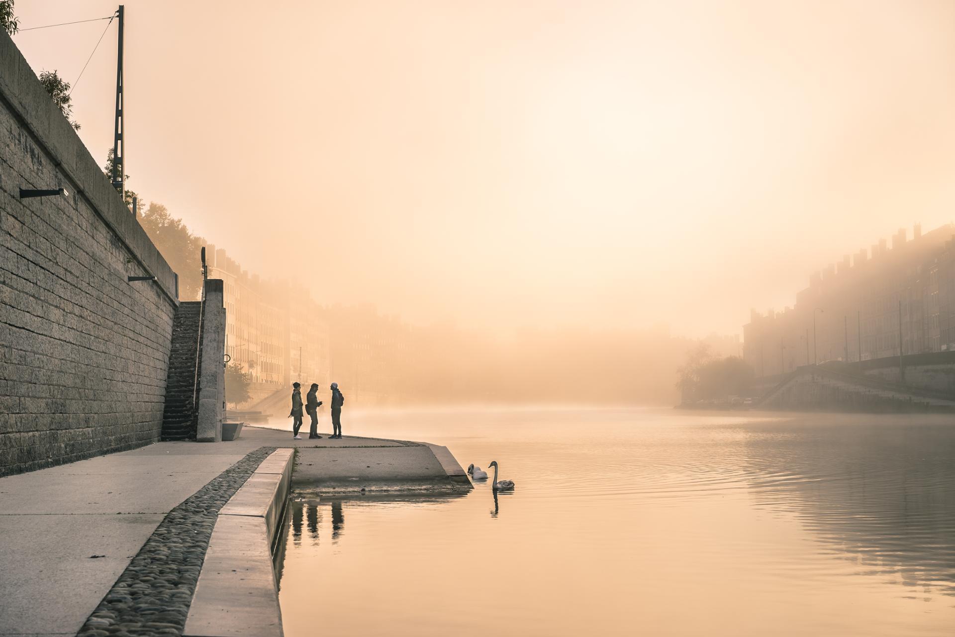 Mist's morning
