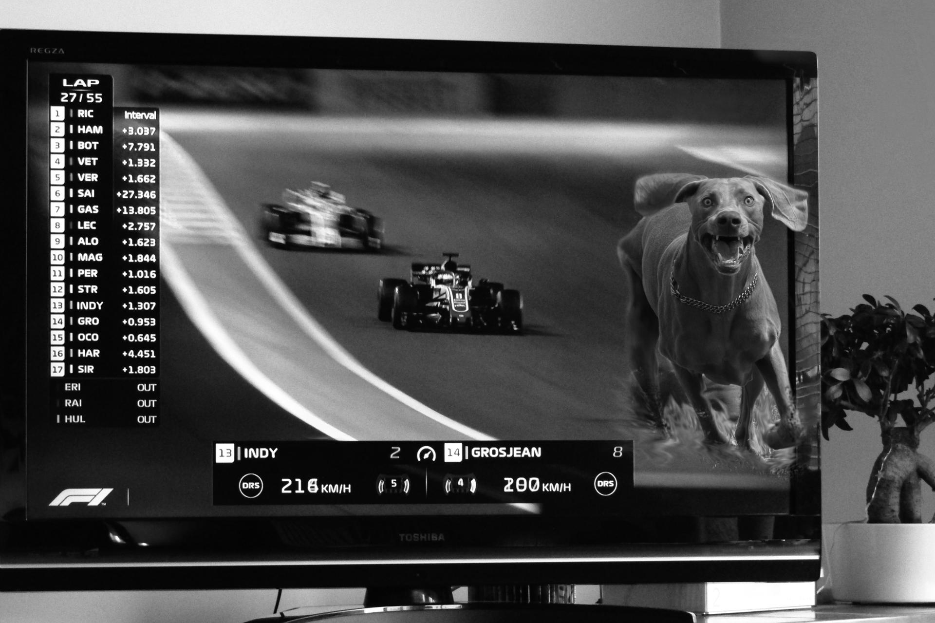 """""""Sérieux s'abstenir"""" !!! Ecurie Force Indy :-)"""