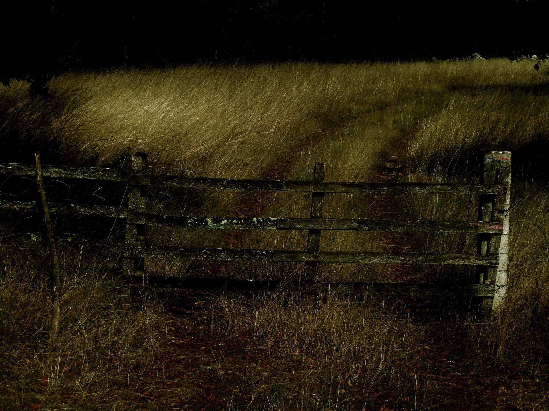 La barrière.