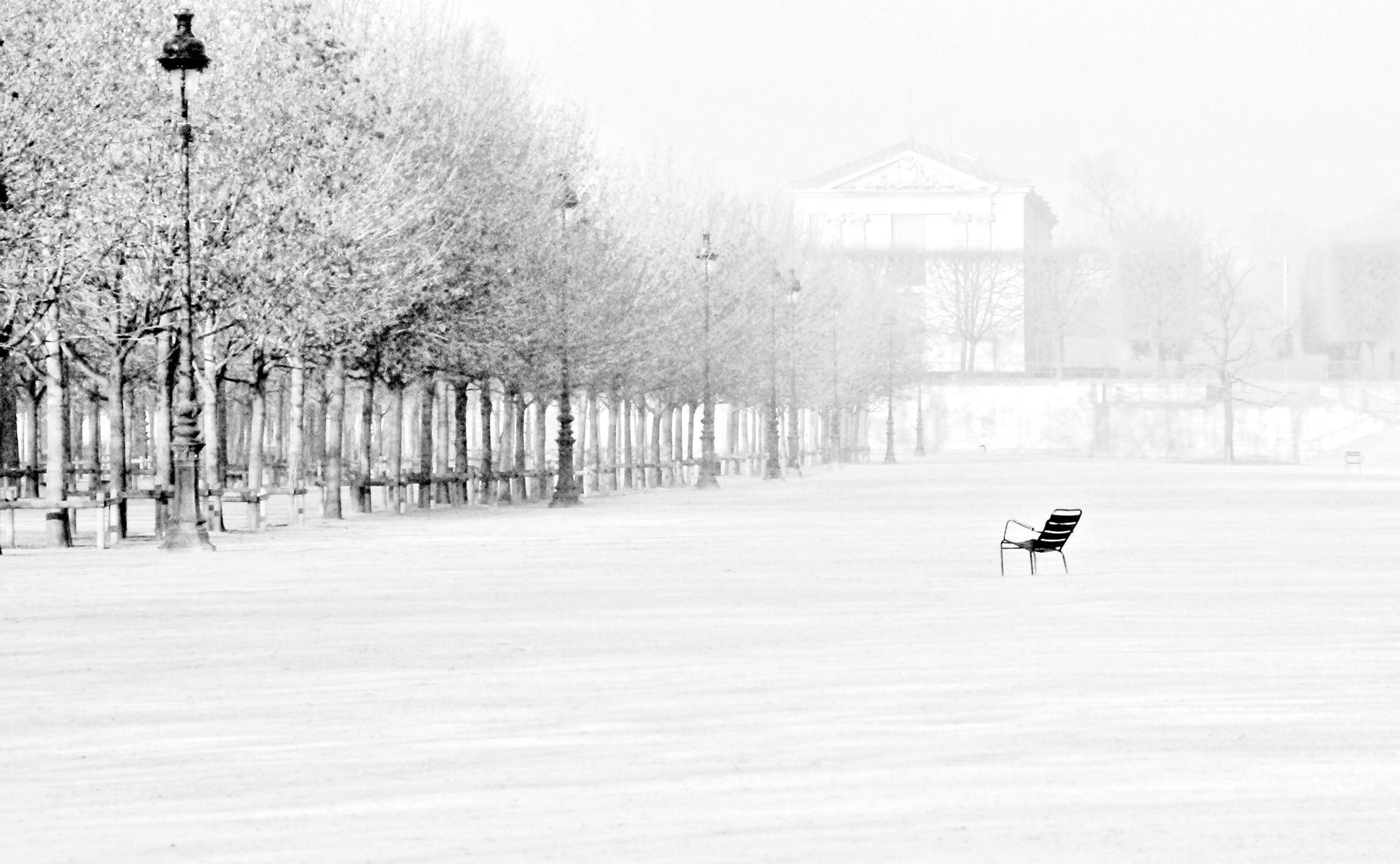 Seul dans Paris. Jardin des Tuileries
