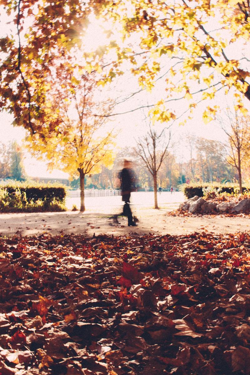 Grenoble en automne