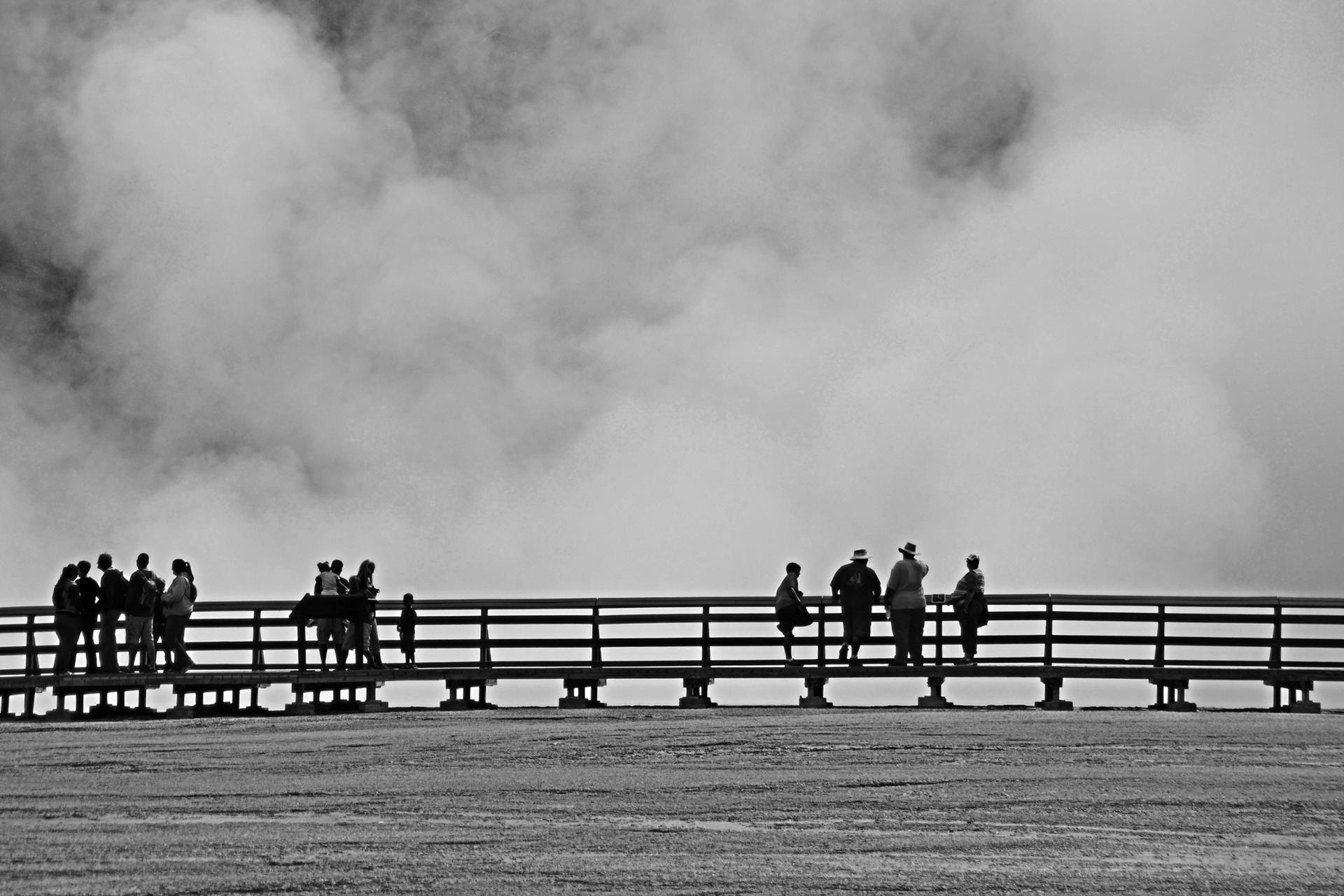 Champs de brume