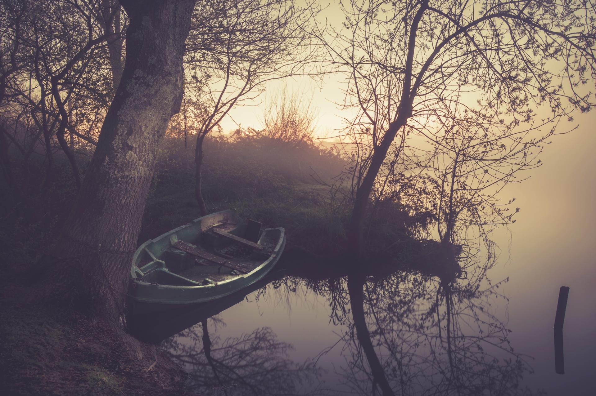 Les matins paisibles de l'Acheneau
