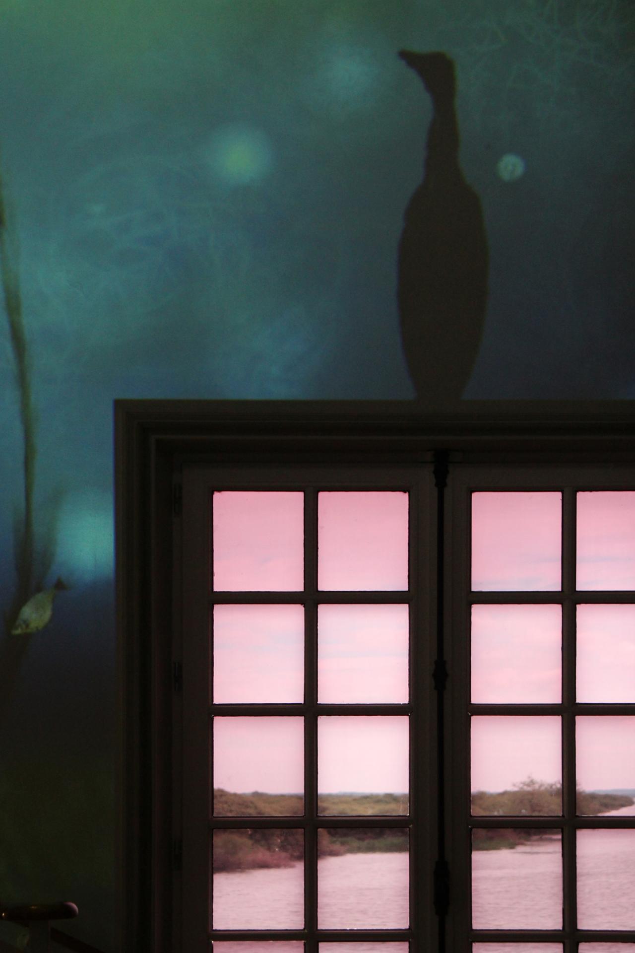 Sur une fenêtre perché (pavillon Guerlain - Maison du lac de Grand-Lieu - Bouaye)